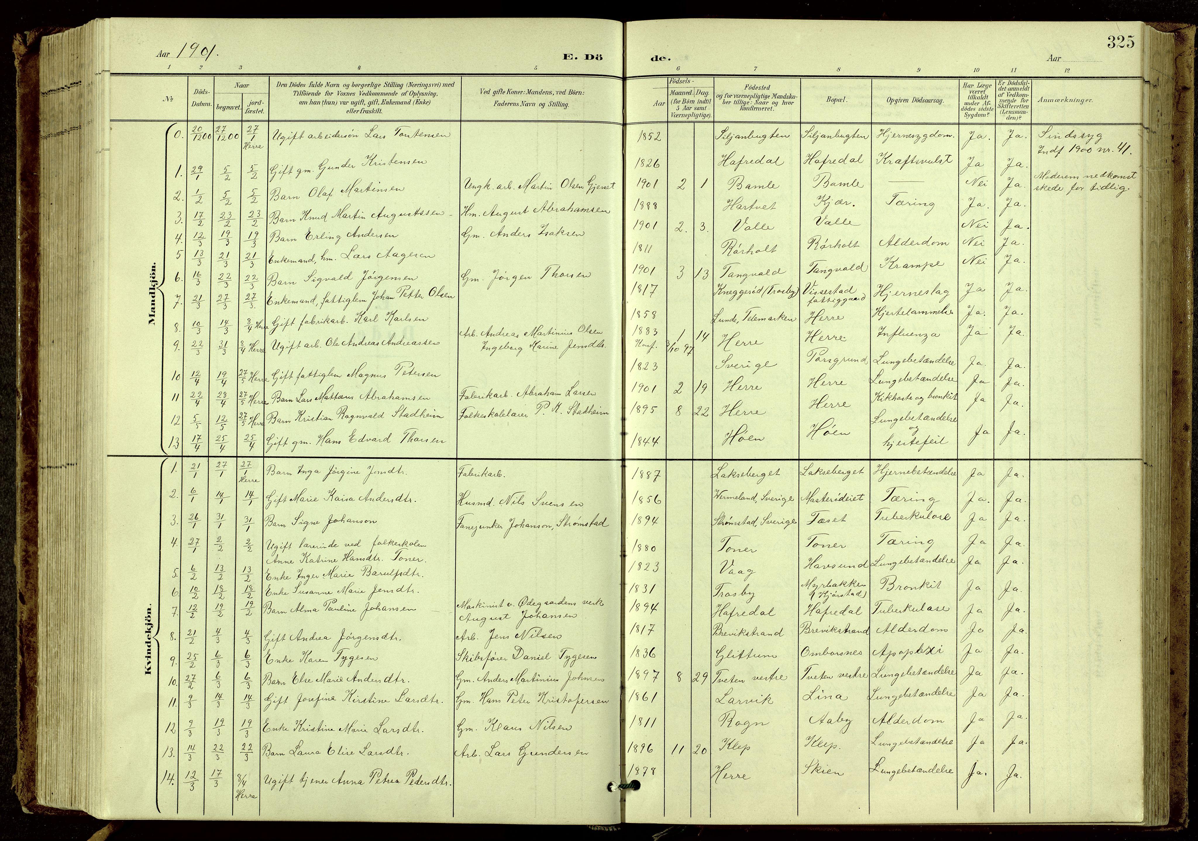 SAKO, Bamble kirkebøker, G/Ga/L0010: Klokkerbok nr. I 10, 1901-1919, s. 325
