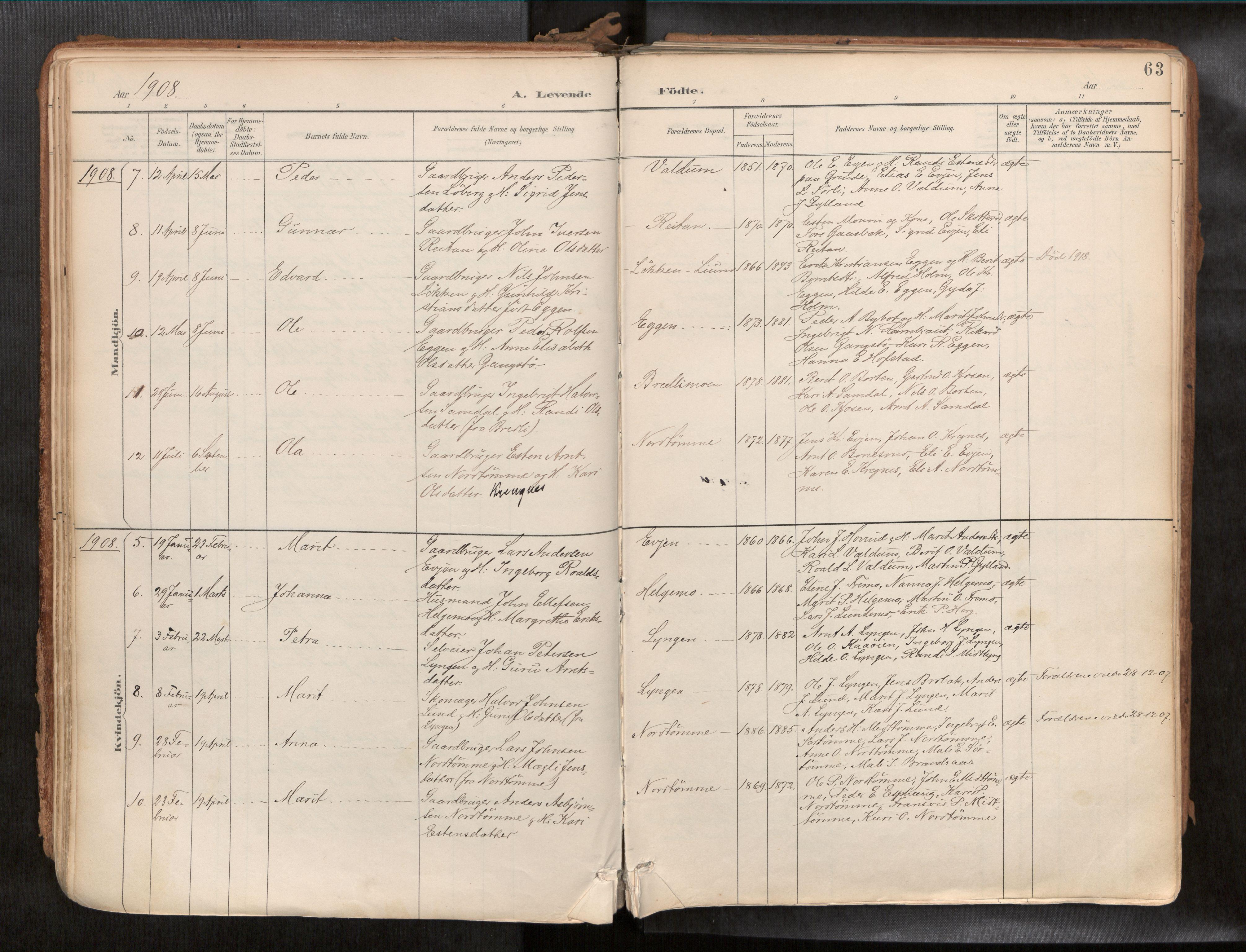 SAT, Ministerialprotokoller, klokkerbøker og fødselsregistre - Sør-Trøndelag, 692/L1105b: Ministerialbok nr. 692A06, 1891-1934, s. 63