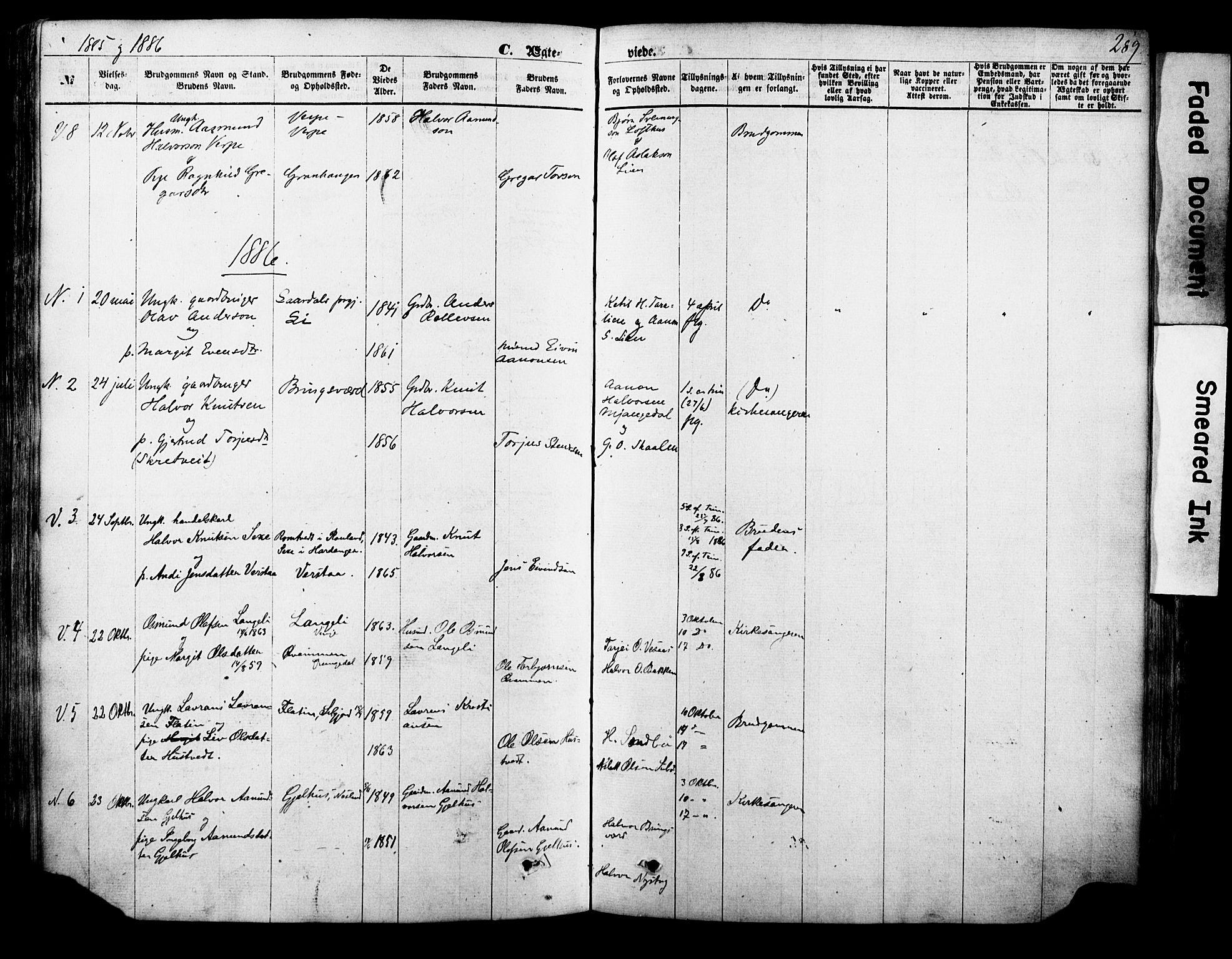 SAKO, Vinje kirkebøker, F/Fa/L0005: Ministerialbok nr. I 5, 1870-1886, s. 289