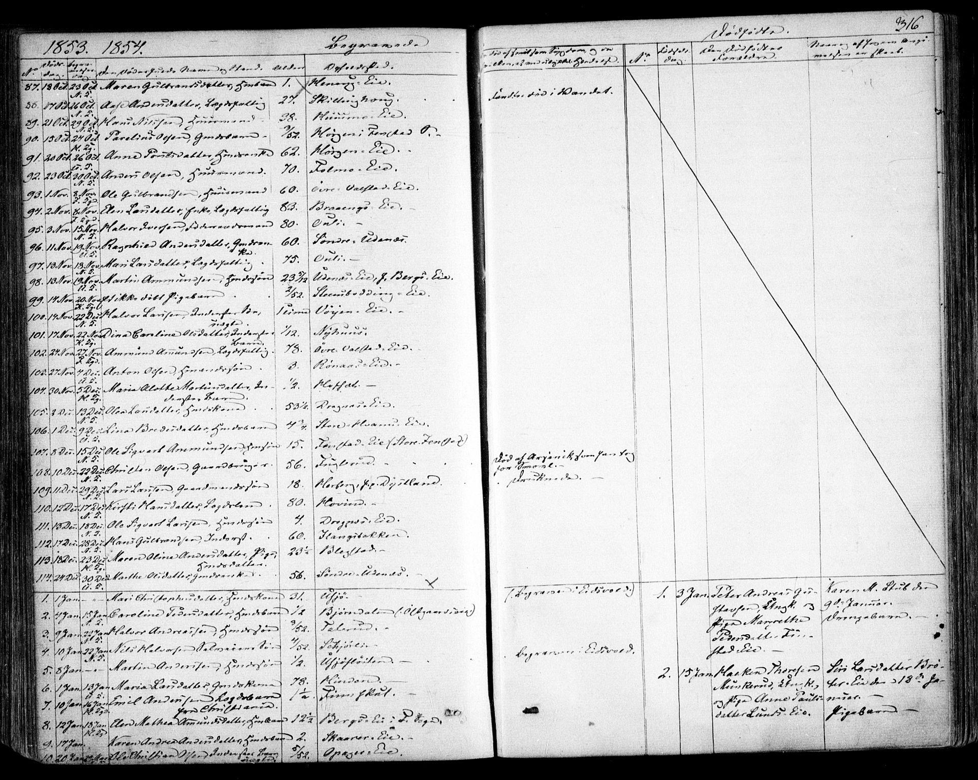 SAO, Nes prestekontor Kirkebøker, F/Fa/L0007: Ministerialbok nr. I 7, 1846-1858, s. 316