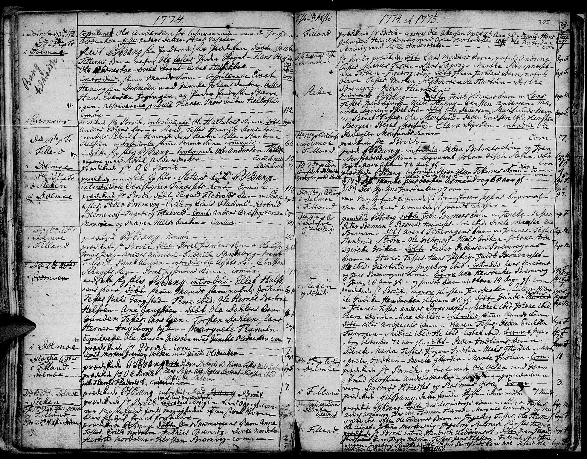 SAT, Ministerialprotokoller, klokkerbøker og fødselsregistre - Sør-Trøndelag, 634/L0525: Ministerialbok nr. 634A01, 1736-1775, s. 305