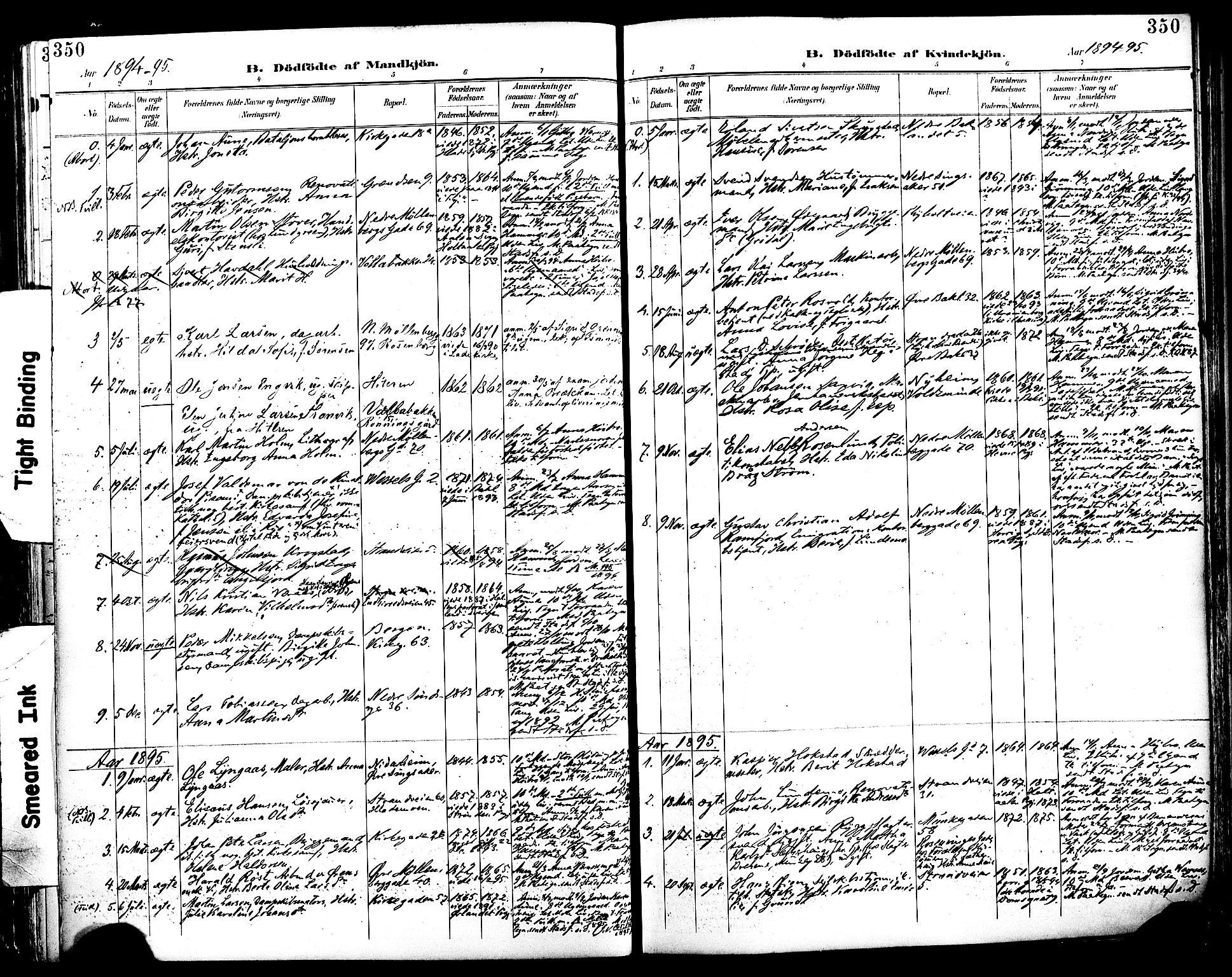 SAT, Ministerialprotokoller, klokkerbøker og fødselsregistre - Sør-Trøndelag, 604/L0197: Ministerialbok nr. 604A18, 1893-1900, s. 350