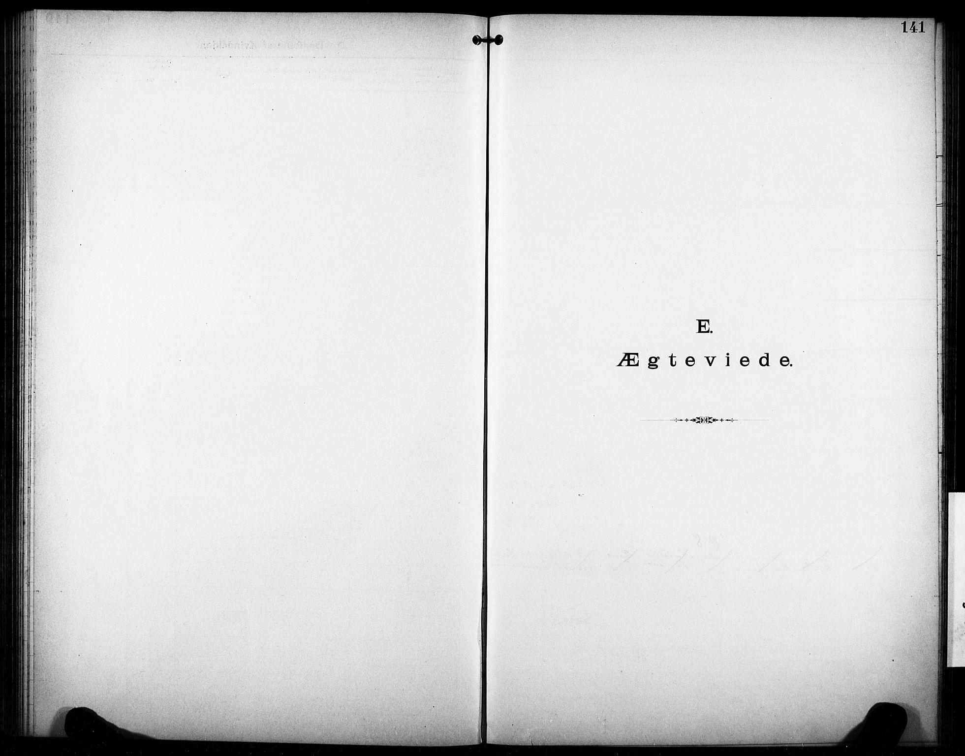 SAKO, Den katolsk-apostoliske menighet i Larvik, F/Fa/L0001: Dissenterprotokoll nr. 1, 1892-1933, s. 141
