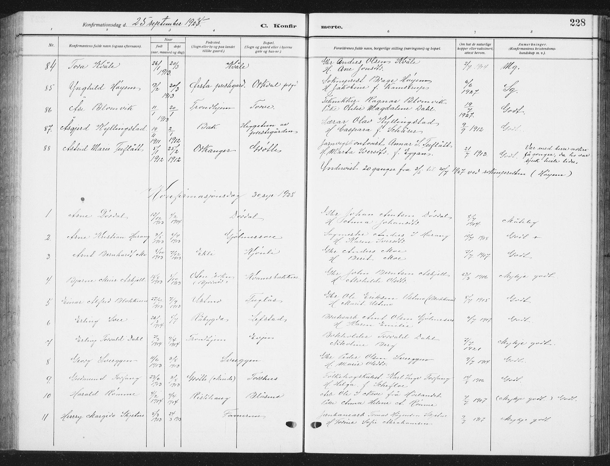 SAT, Ministerialprotokoller, klokkerbøker og fødselsregistre - Sør-Trøndelag, 668/L0820: Klokkerbok nr. 668C09, 1912-1936, s. 228