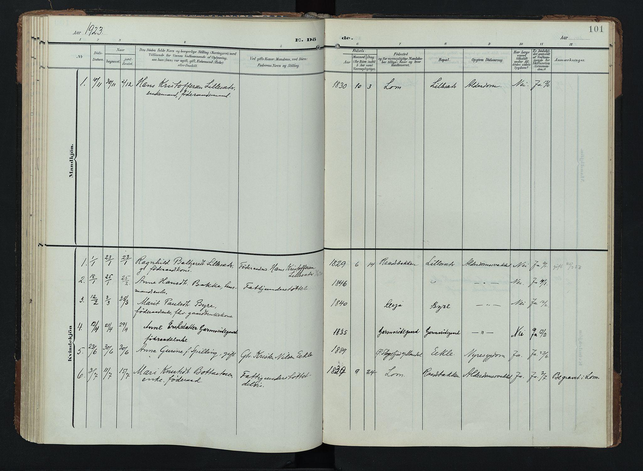 SAH, Lom prestekontor, K/L0011: Ministerialbok nr. 11, 1904-1928, s. 101