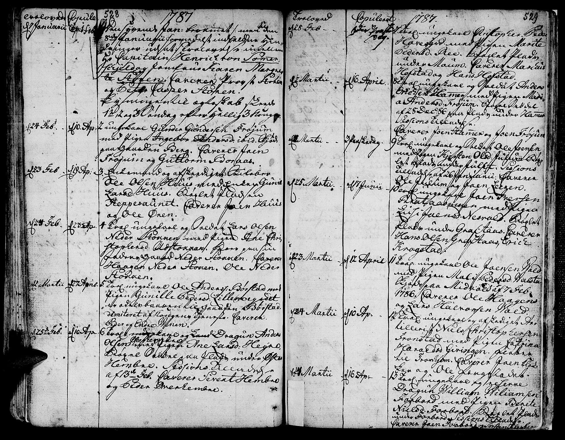 SAT, Ministerialprotokoller, klokkerbøker og fødselsregistre - Nord-Trøndelag, 709/L0059: Ministerialbok nr. 709A06, 1781-1797, s. 528-529