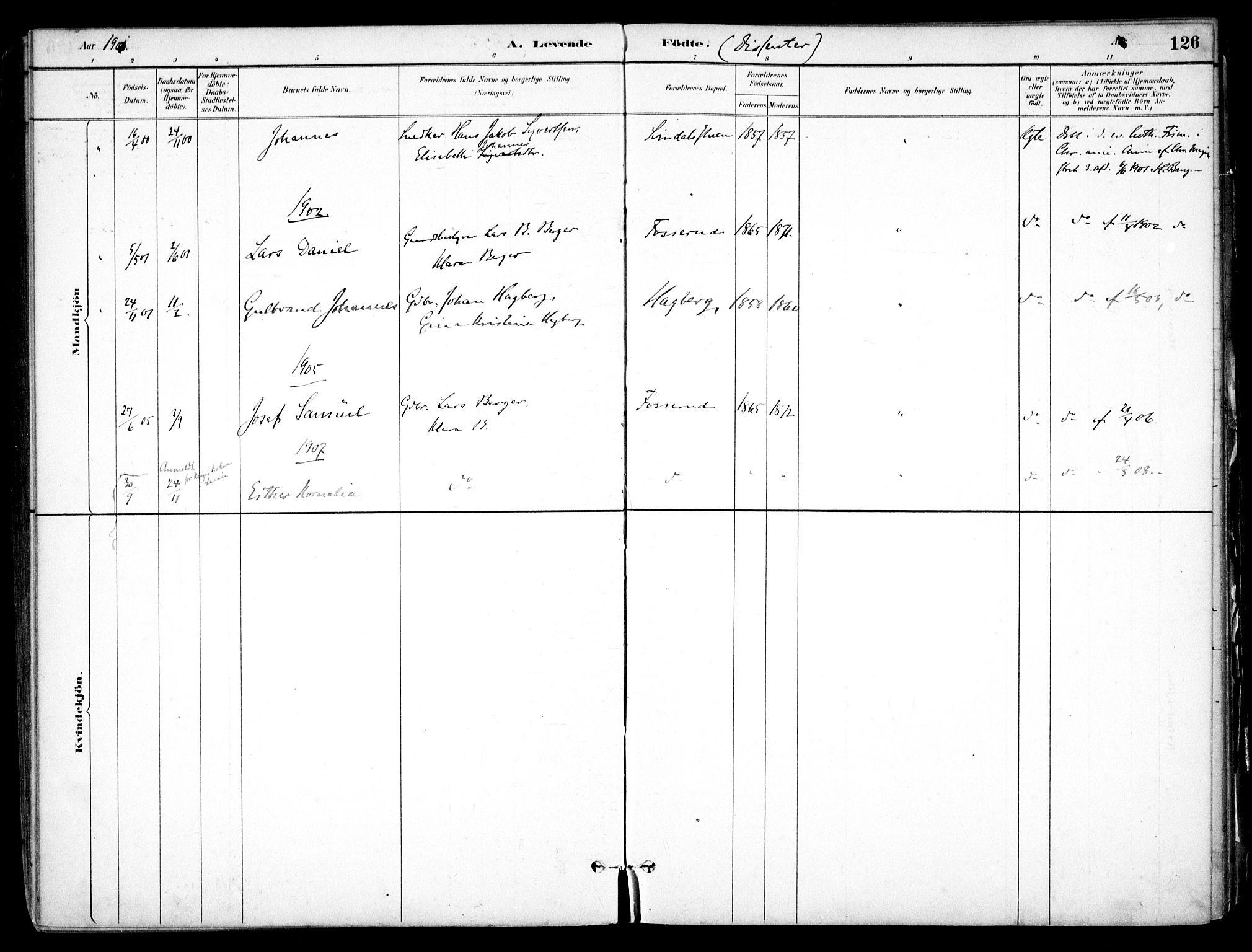 SAO, Nes prestekontor Kirkebøker, F/Fb/L0002: Ministerialbok nr. II 2, 1883-1918, s. 126