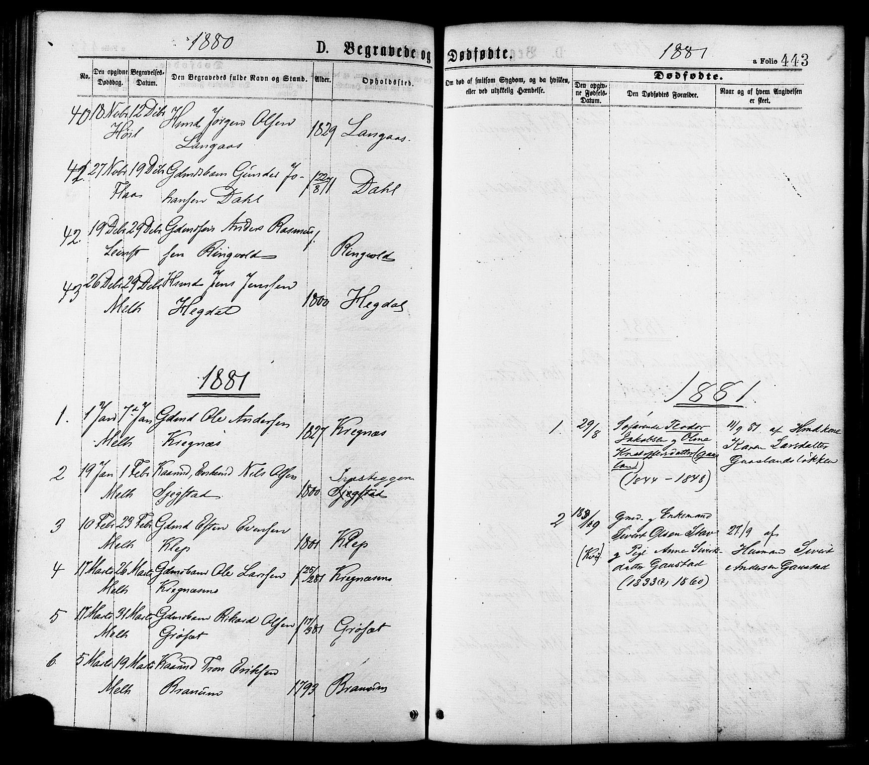 SAT, Ministerialprotokoller, klokkerbøker og fødselsregistre - Sør-Trøndelag, 691/L1079: Ministerialbok nr. 691A11, 1873-1886, s. 443