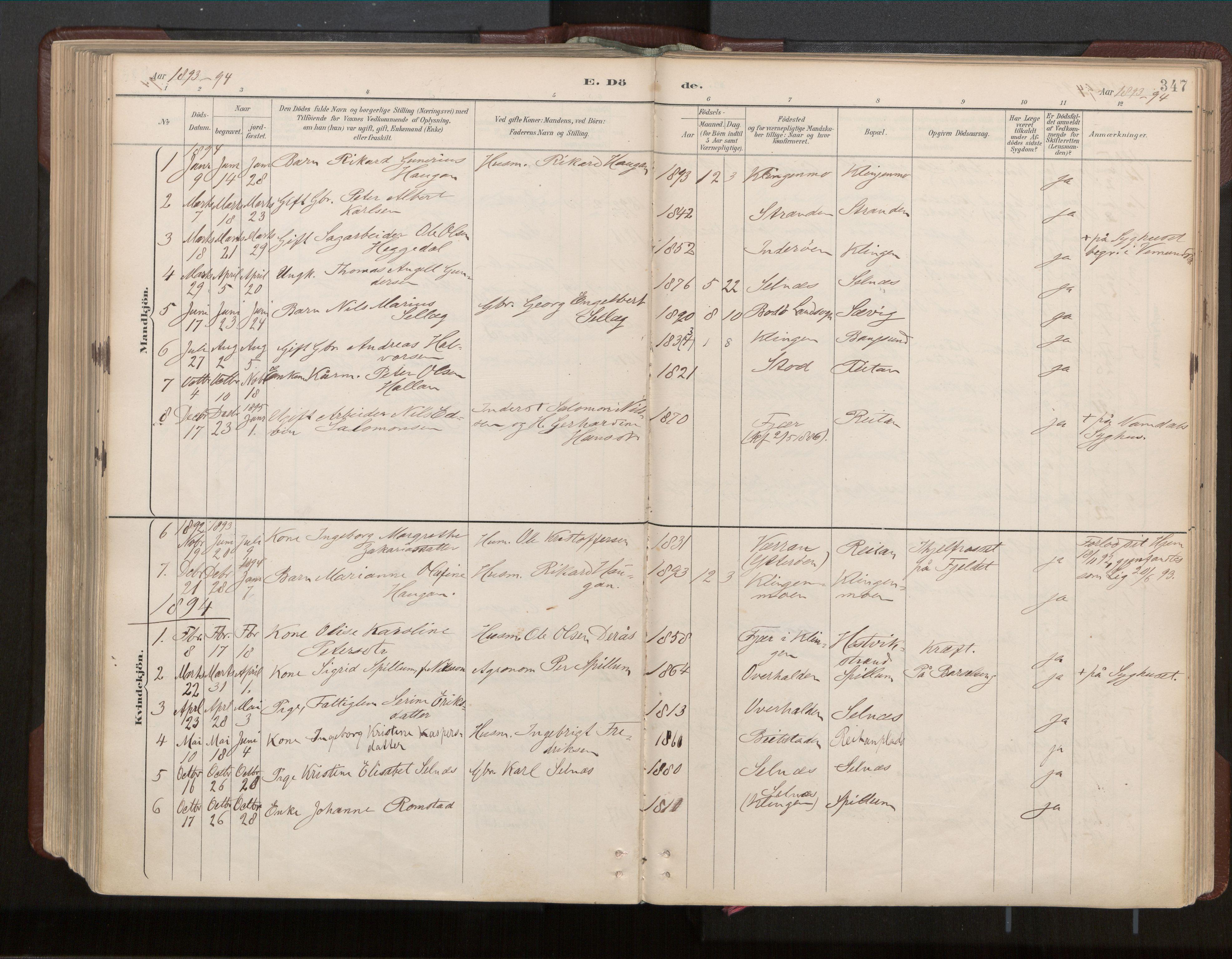 SAT, Ministerialprotokoller, klokkerbøker og fødselsregistre - Nord-Trøndelag, 770/L0589: Ministerialbok nr. 770A03, 1887-1929, s. 347