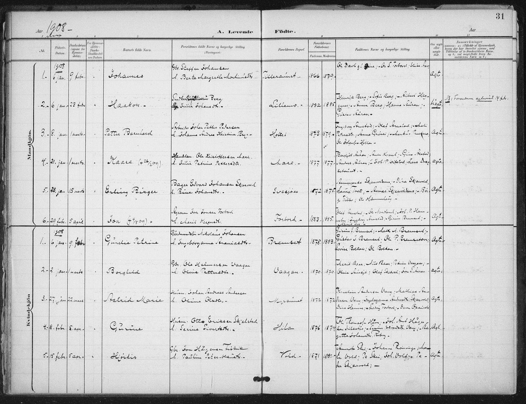 SAT, Ministerialprotokoller, klokkerbøker og fødselsregistre - Nord-Trøndelag, 712/L0101: Ministerialbok nr. 712A02, 1901-1916, s. 31