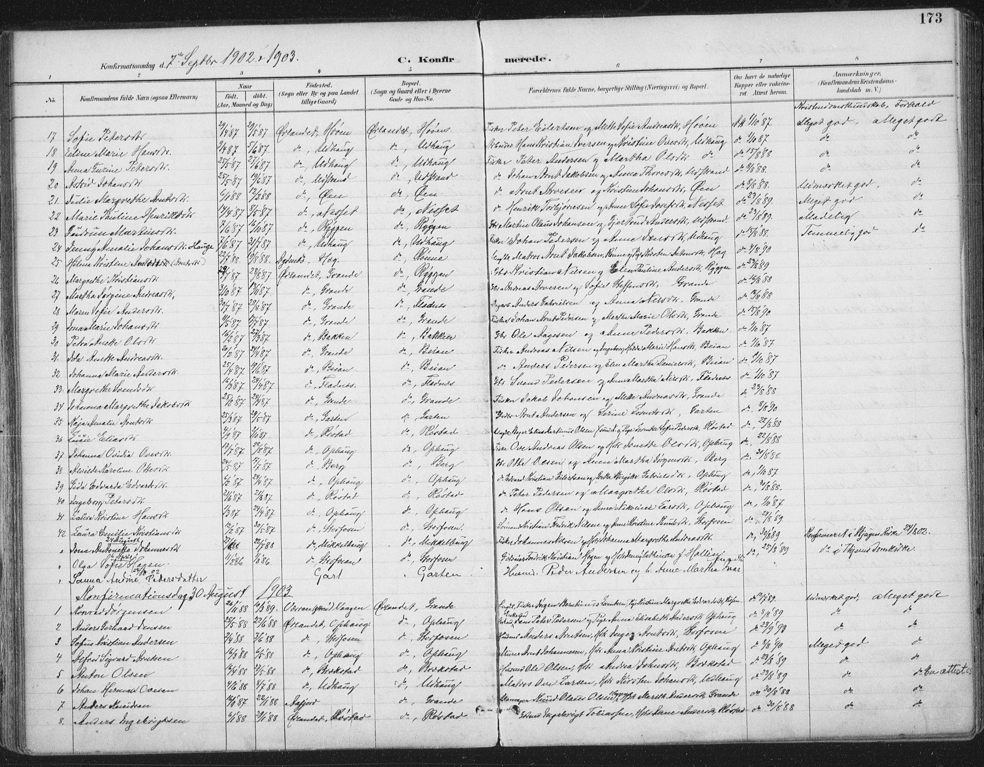 SAT, Ministerialprotokoller, klokkerbøker og fødselsregistre - Sør-Trøndelag, 659/L0743: Ministerialbok nr. 659A13, 1893-1910, s. 173
