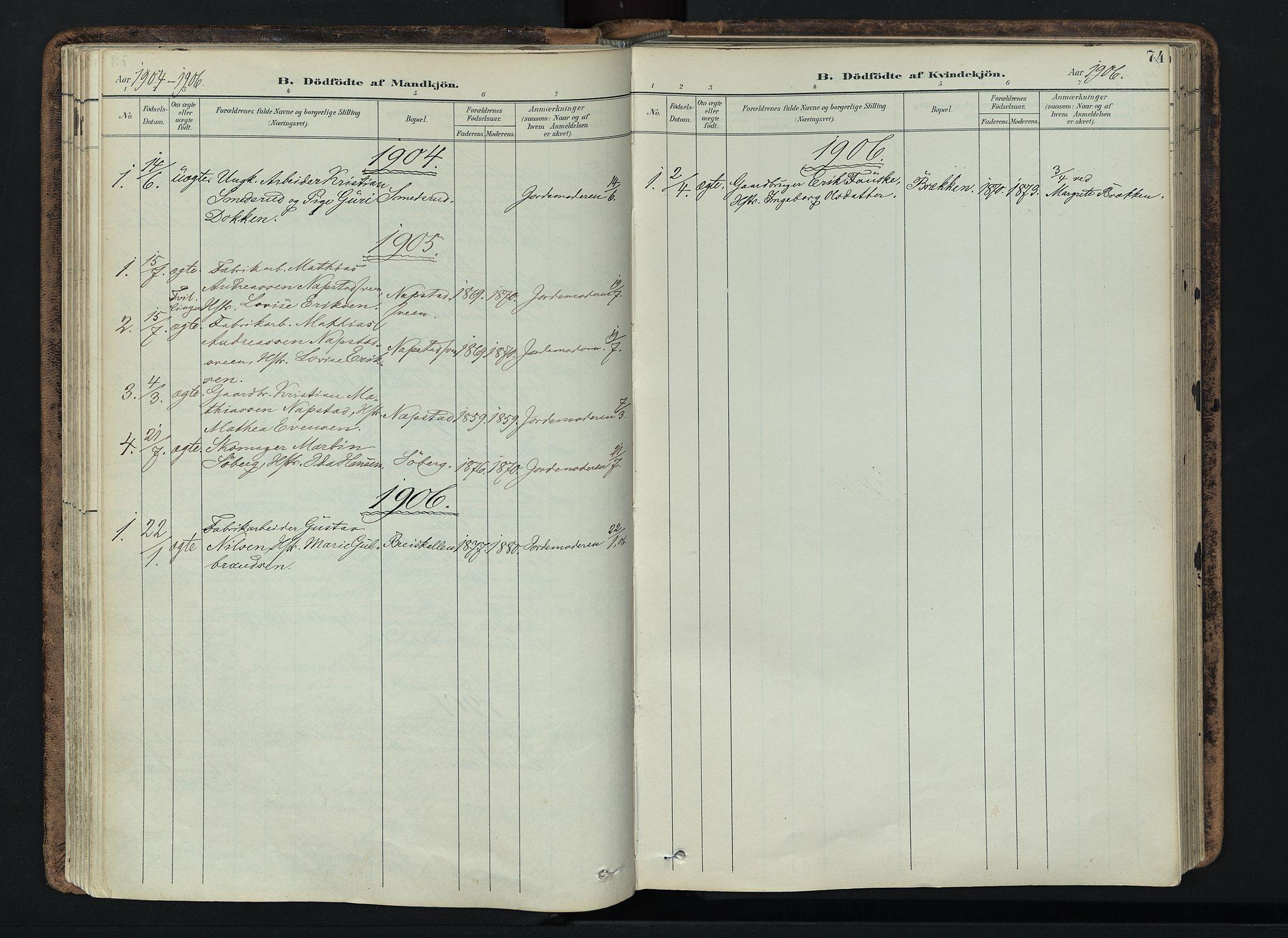 SAH, Vardal prestekontor, H/Ha/Haa/L0019: Ministerialbok nr. 19, 1893-1907, s. 74