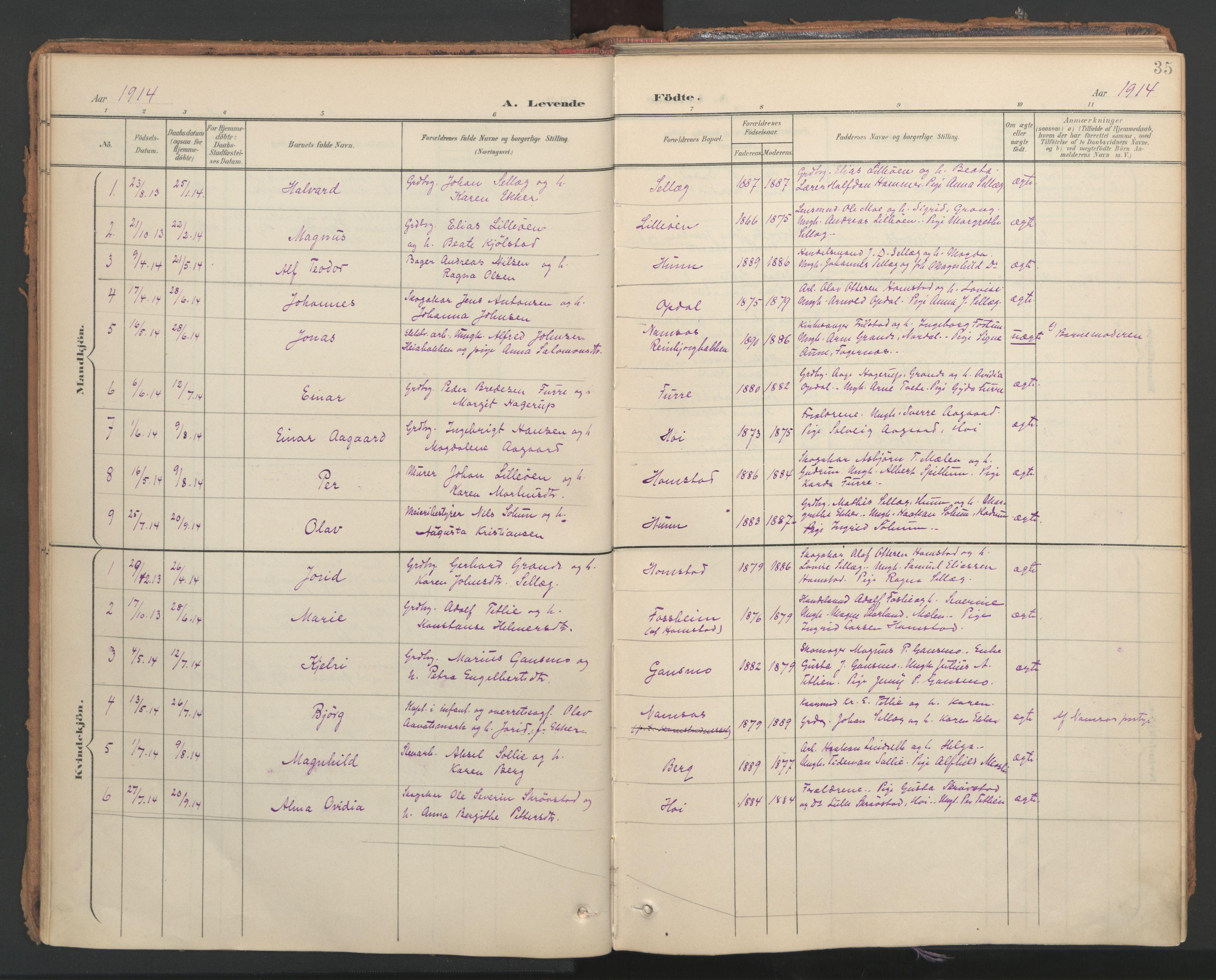 SAT, Ministerialprotokoller, klokkerbøker og fødselsregistre - Nord-Trøndelag, 766/L0564: Ministerialbok nr. 767A02, 1900-1932, s. 35