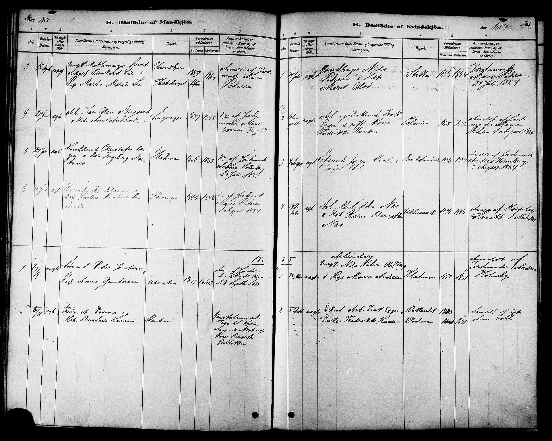 SAT, Ministerialprotokoller, klokkerbøker og fødselsregistre - Sør-Trøndelag, 606/L0294: Ministerialbok nr. 606A09, 1878-1886, s. 208