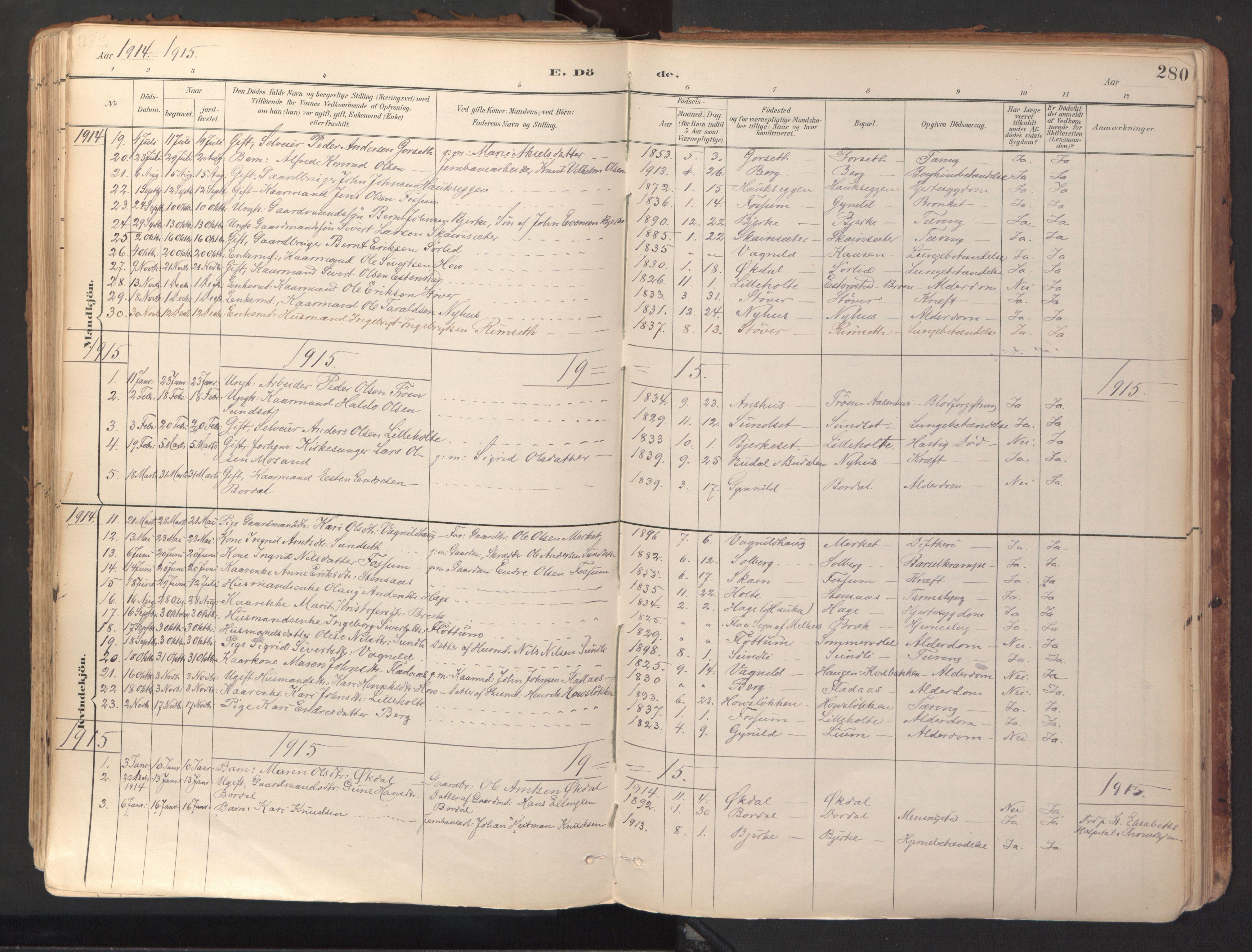 SAT, Ministerialprotokoller, klokkerbøker og fødselsregistre - Sør-Trøndelag, 689/L1041: Ministerialbok nr. 689A06, 1891-1923, s. 280