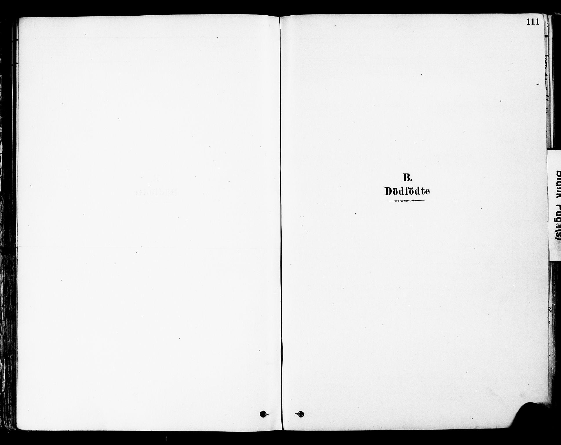SAH, Øyer prestekontor, Ministerialbok nr. 8, 1878-1897, s. 111