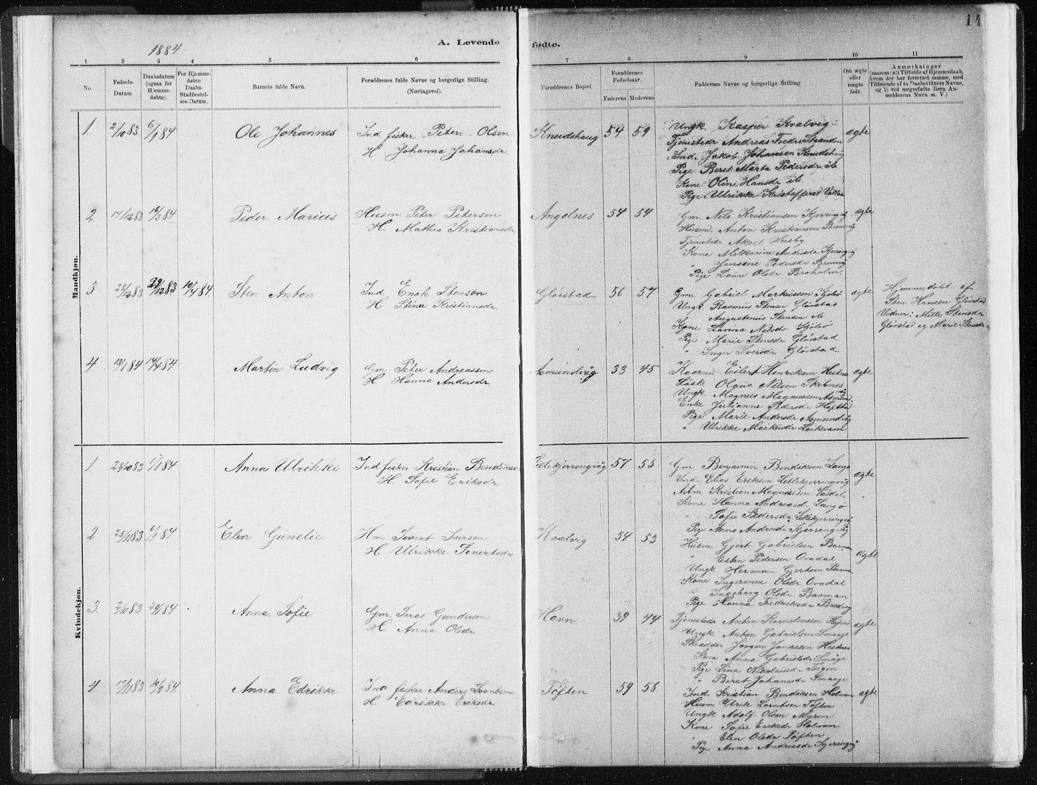 SAT, Ministerialprotokoller, klokkerbøker og fødselsregistre - Sør-Trøndelag, 634/L0533: Ministerialbok nr. 634A09, 1882-1901, s. 14