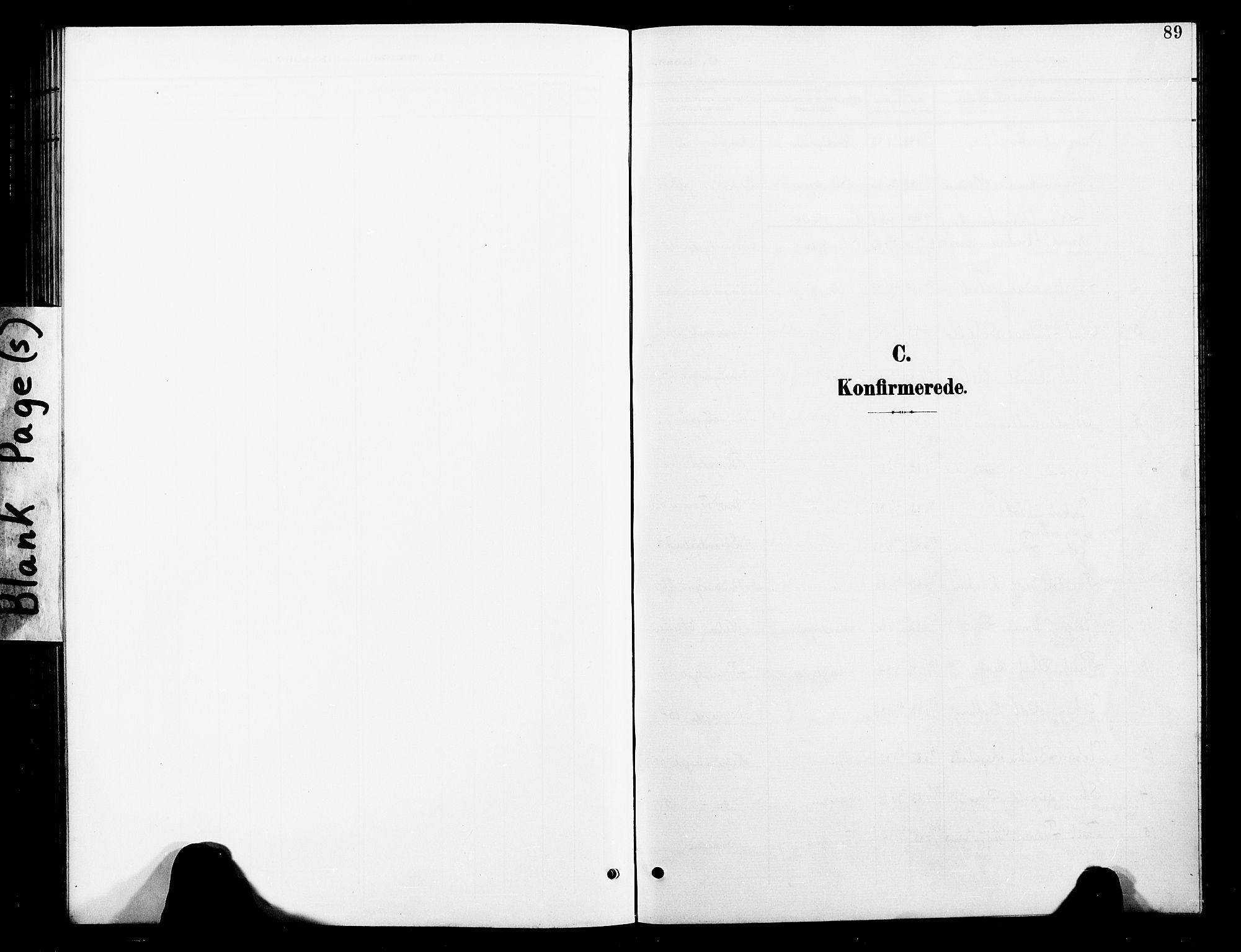 SAT, Ministerialprotokoller, klokkerbøker og fødselsregistre - Nord-Trøndelag, 739/L0375: Klokkerbok nr. 739C03, 1898-1908, s. 89