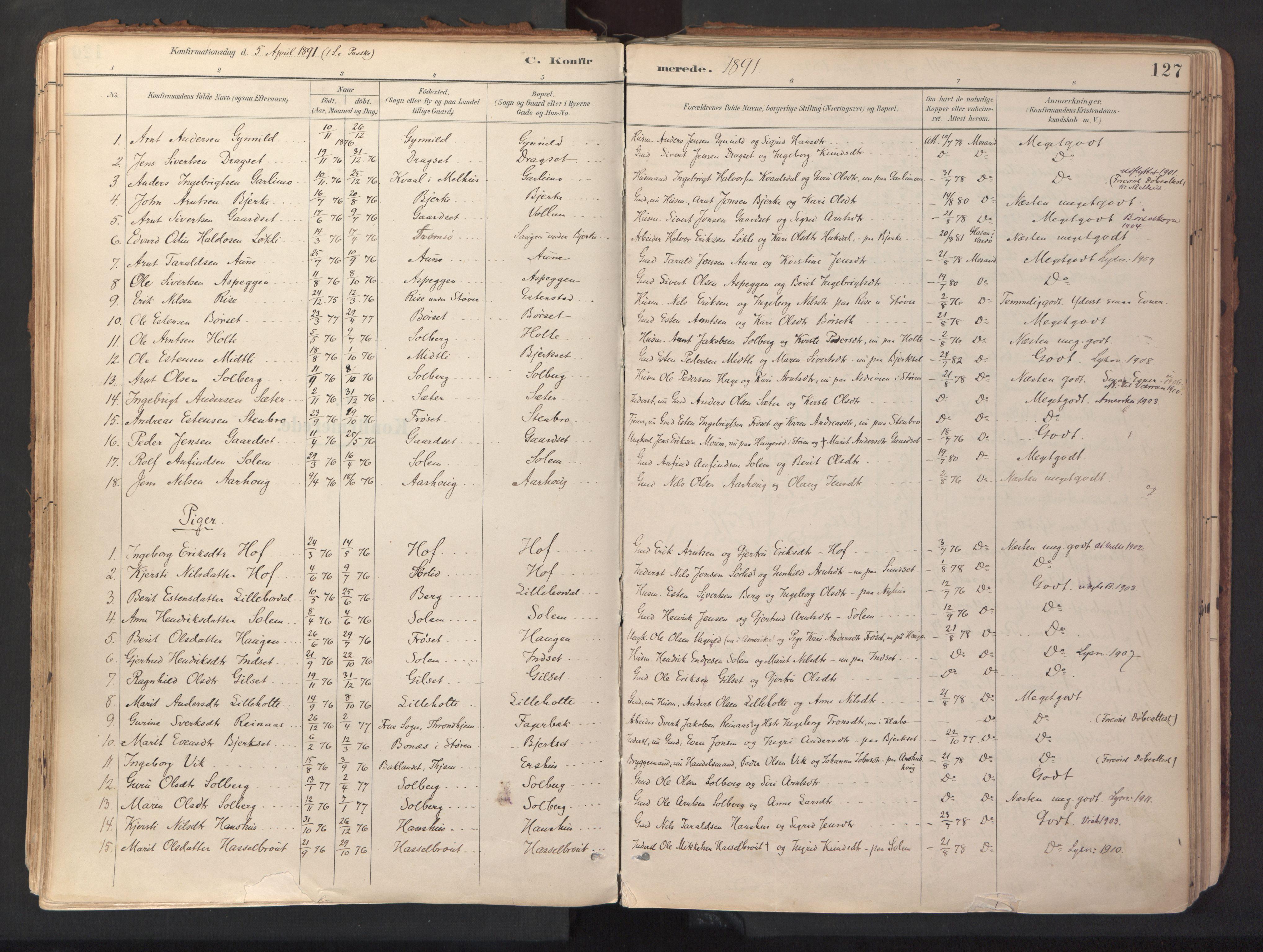 SAT, Ministerialprotokoller, klokkerbøker og fødselsregistre - Sør-Trøndelag, 689/L1041: Ministerialbok nr. 689A06, 1891-1923, s. 127