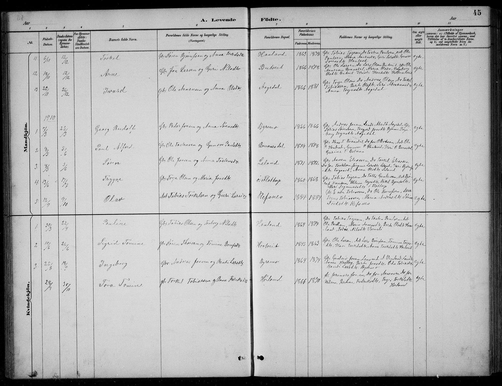 SAK, Bjelland sokneprestkontor, F/Fb/Fbc/L0003: Klokkerbok nr. B 3, 1887-1924, s. 45