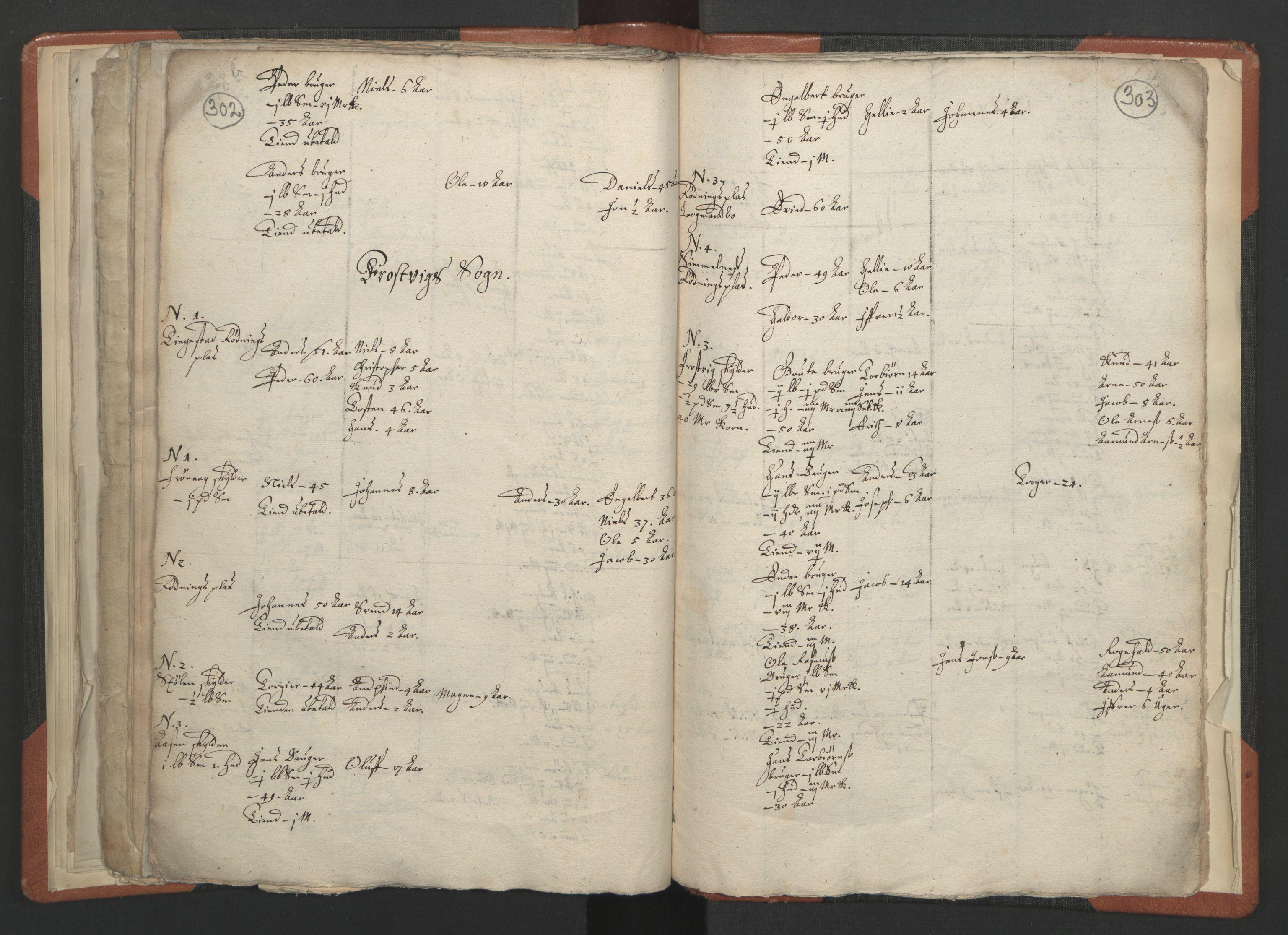 RA, Sogneprestenes manntall 1664-1666, nr. 23: Sogn prosti, 1664-1666, s. 302-303