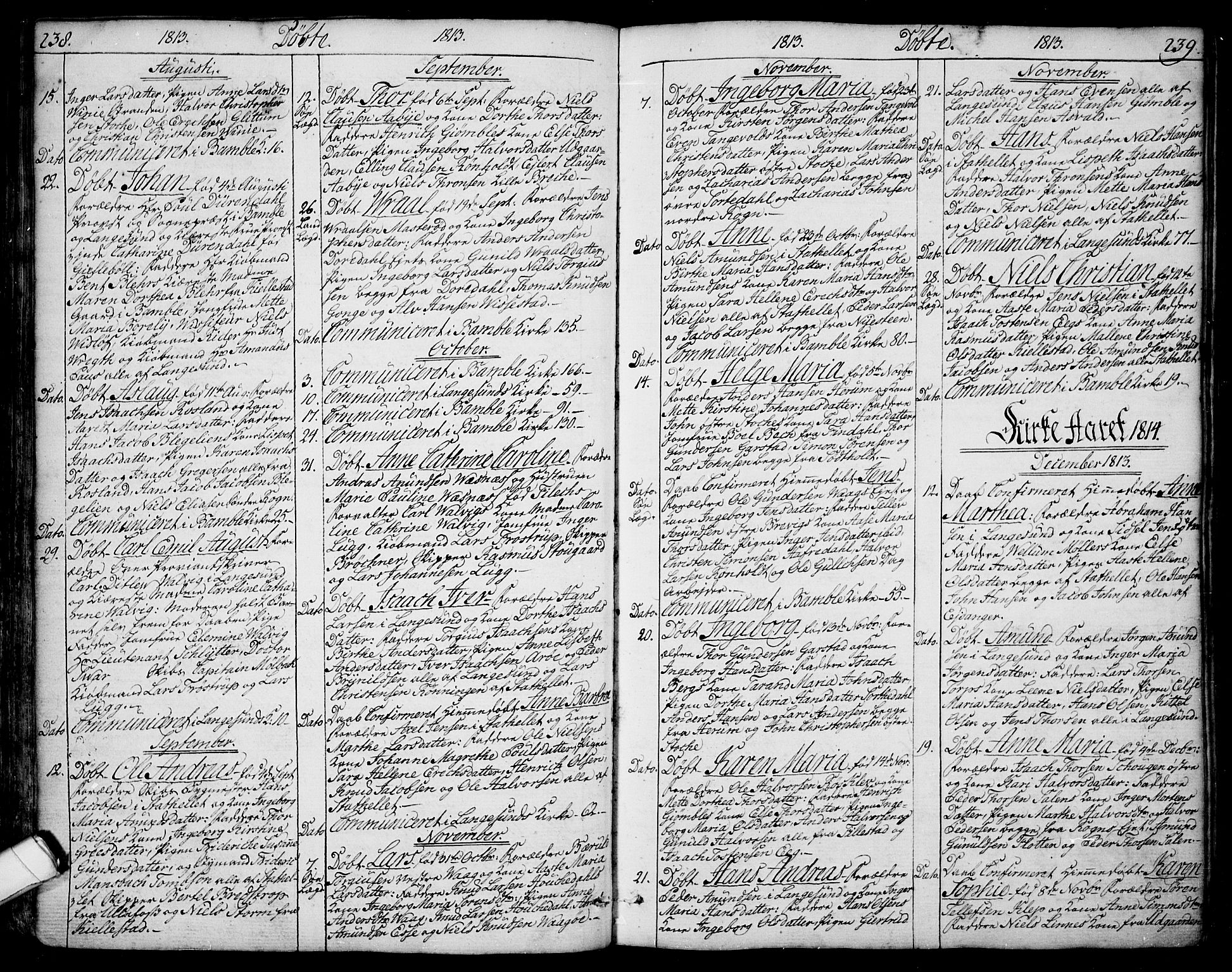 SAKO, Bamble kirkebøker, F/Fa/L0002: Ministerialbok nr. I 2, 1775-1814, s. 238-239