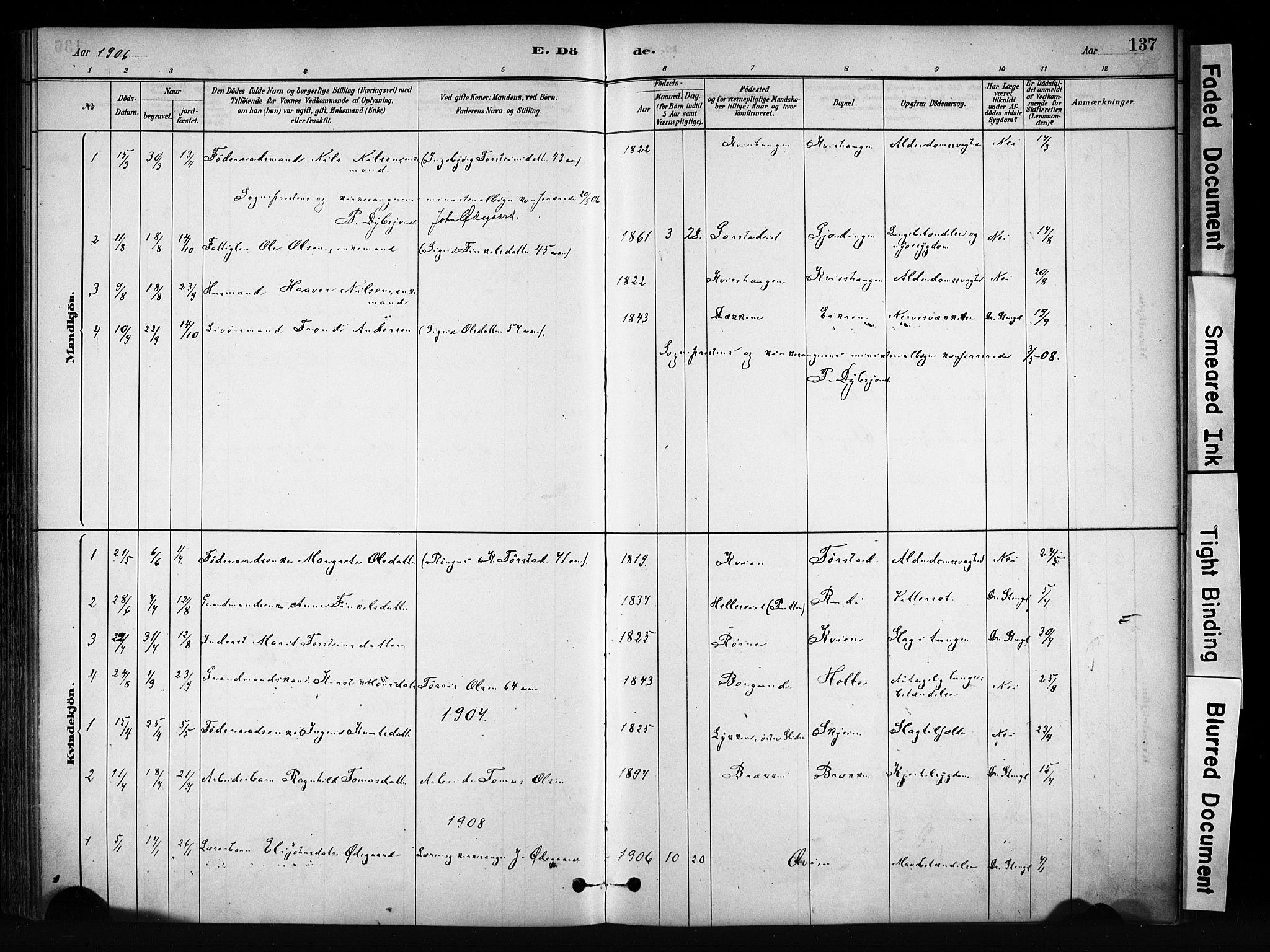 SAH, Vang prestekontor, Valdres, Ministerialbok nr. 9, 1882-1914, s. 137