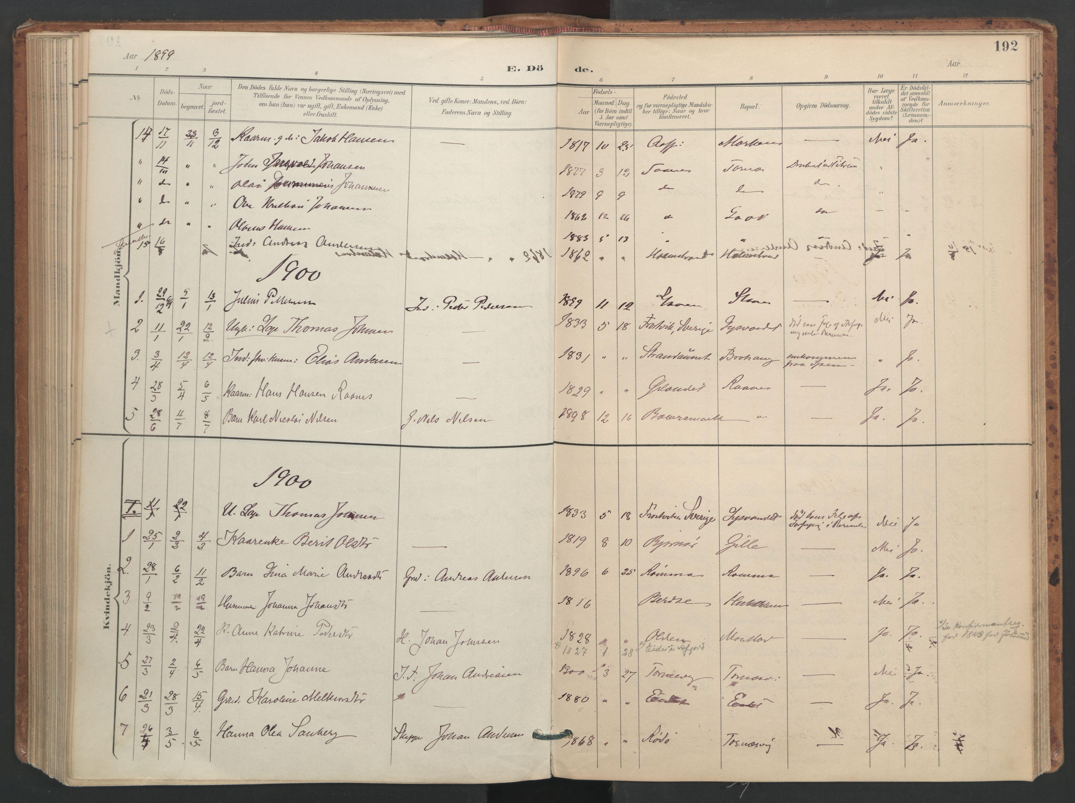 SAT, Ministerialprotokoller, klokkerbøker og fødselsregistre - Sør-Trøndelag, 655/L0681: Ministerialbok nr. 655A10, 1895-1907, s. 192