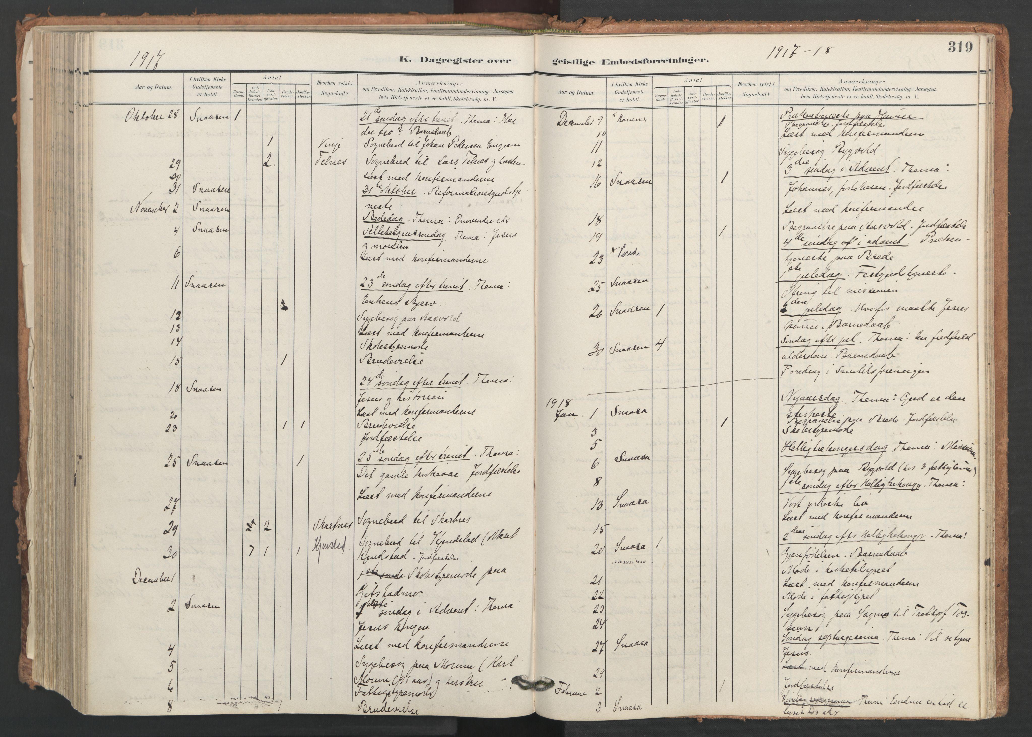 SAT, Ministerialprotokoller, klokkerbøker og fødselsregistre - Nord-Trøndelag, 749/L0477: Ministerialbok nr. 749A11, 1902-1927, s. 319