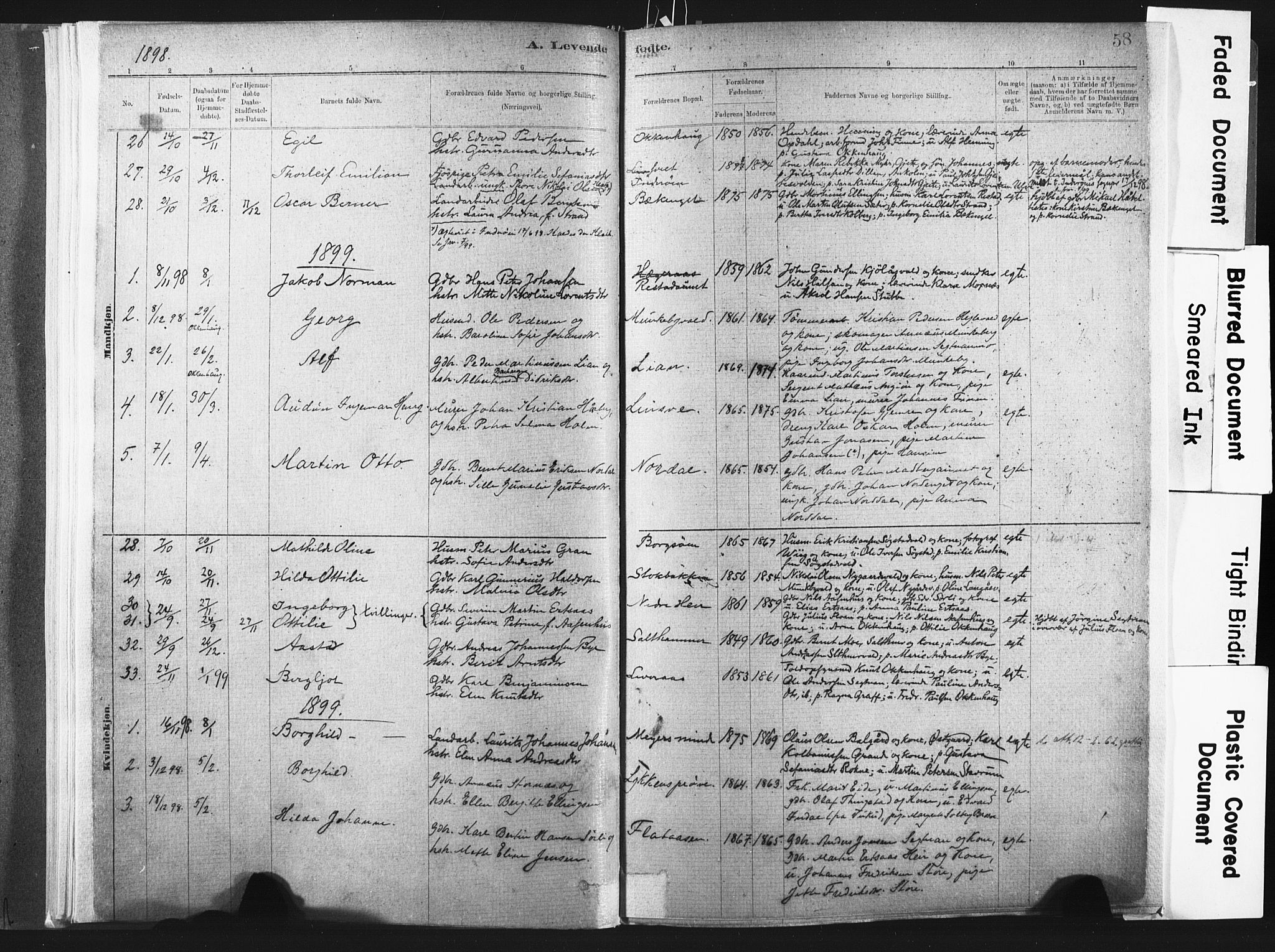 SAT, Ministerialprotokoller, klokkerbøker og fødselsregistre - Nord-Trøndelag, 721/L0207: Ministerialbok nr. 721A02, 1880-1911, s. 58