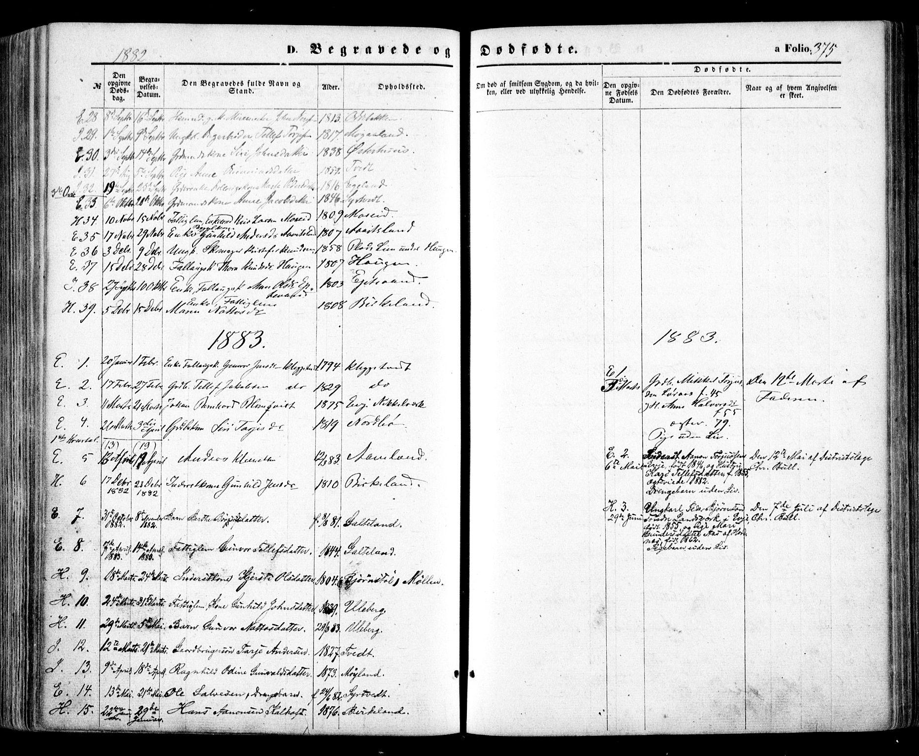 SAK, Evje sokneprestkontor, F/Fa/Faa/L0006: Ministerialbok nr. A 6, 1866-1884, s. 375
