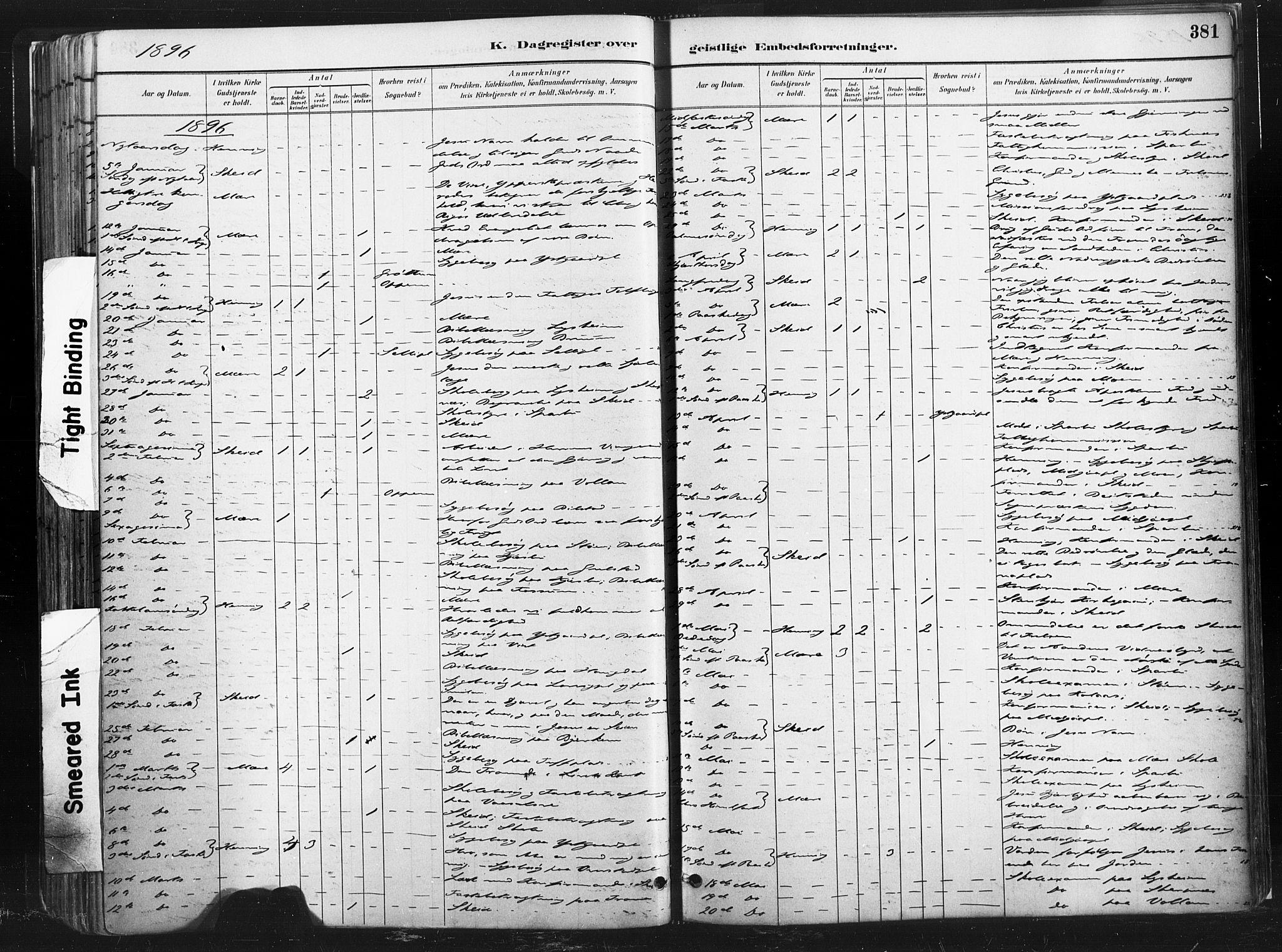 SAT, Ministerialprotokoller, klokkerbøker og fødselsregistre - Nord-Trøndelag, 735/L0351: Ministerialbok nr. 735A10, 1884-1908, s. 381