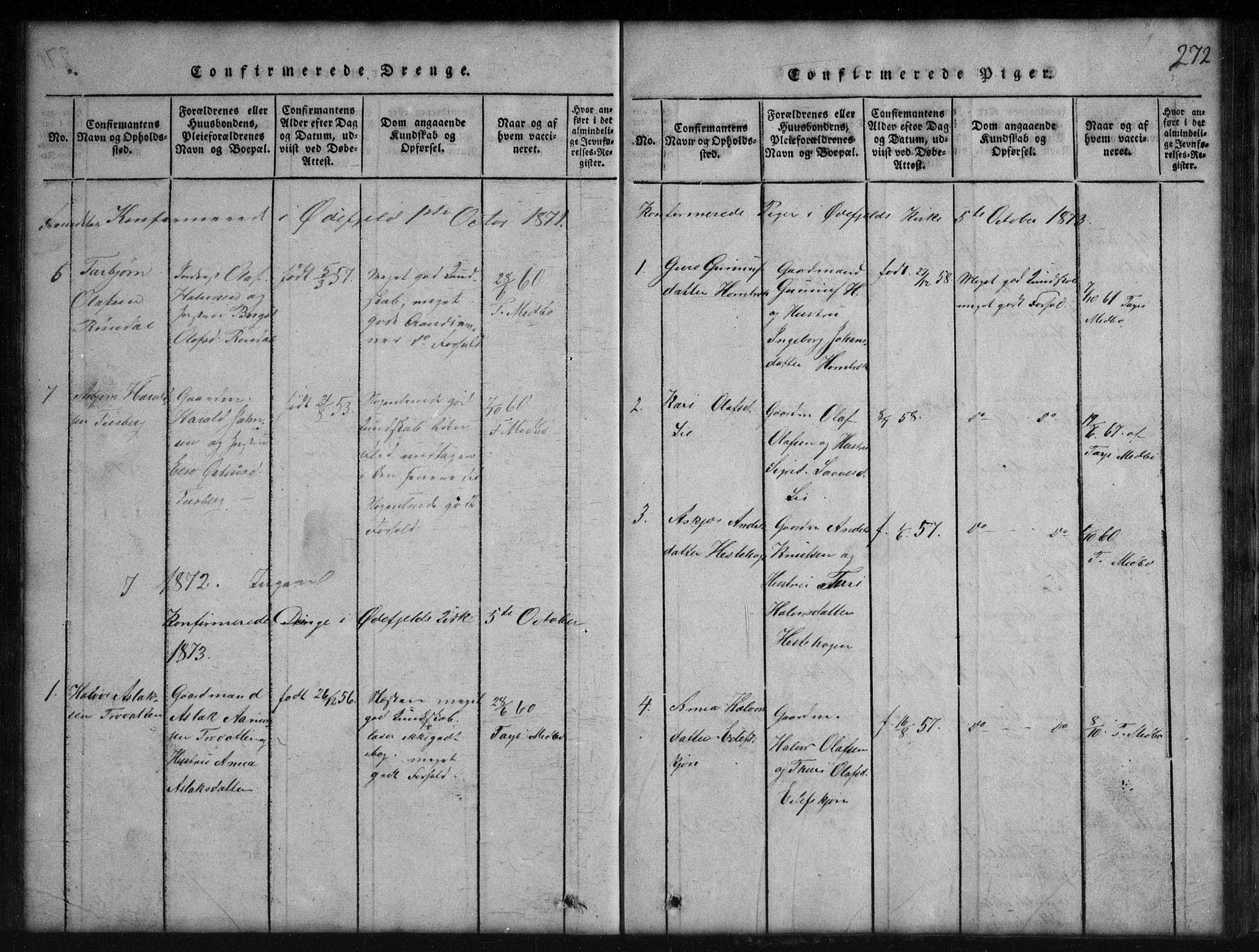 SAKO, Rauland kirkebøker, G/Gb/L0001: Klokkerbok nr. II 1, 1815-1886, s. 272