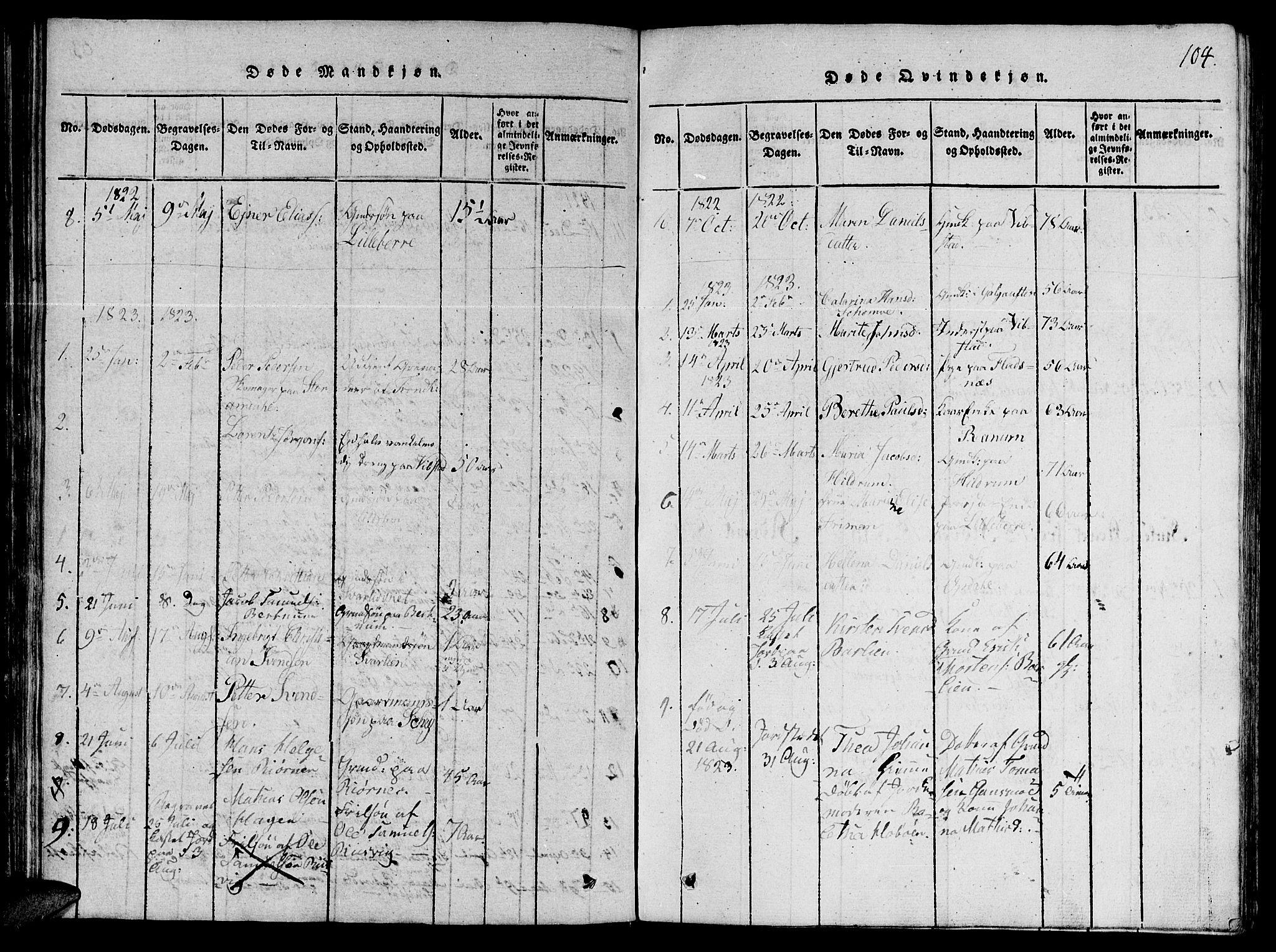 SAT, Ministerialprotokoller, klokkerbøker og fødselsregistre - Nord-Trøndelag, 764/L0546: Ministerialbok nr. 764A06 /1, 1816-1823, s. 104