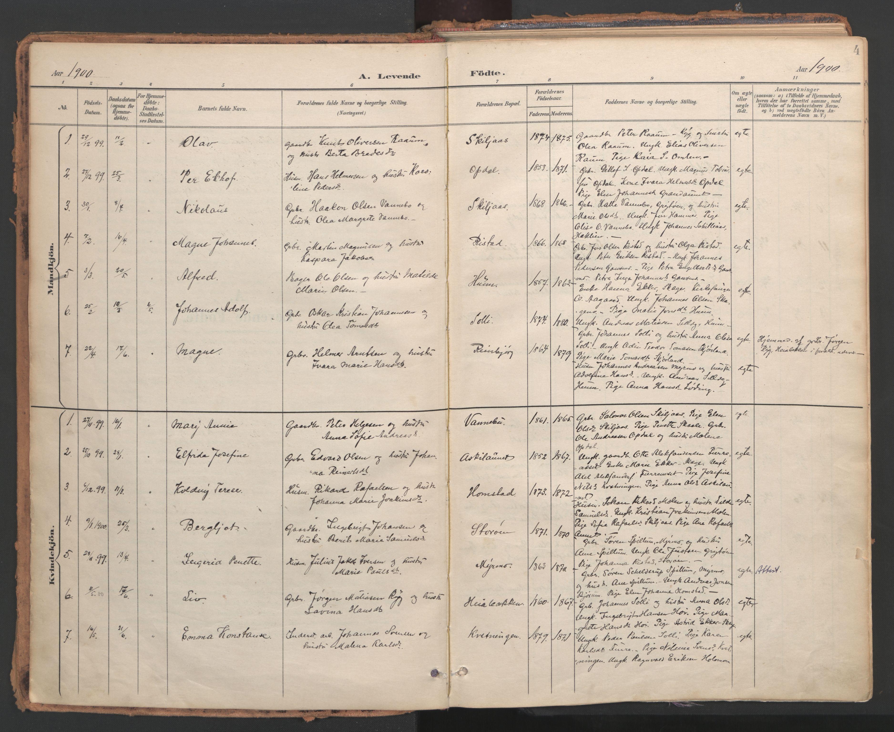 SAT, Ministerialprotokoller, klokkerbøker og fødselsregistre - Nord-Trøndelag, 766/L0564: Ministerialbok nr. 767A02, 1900-1932, s. 4