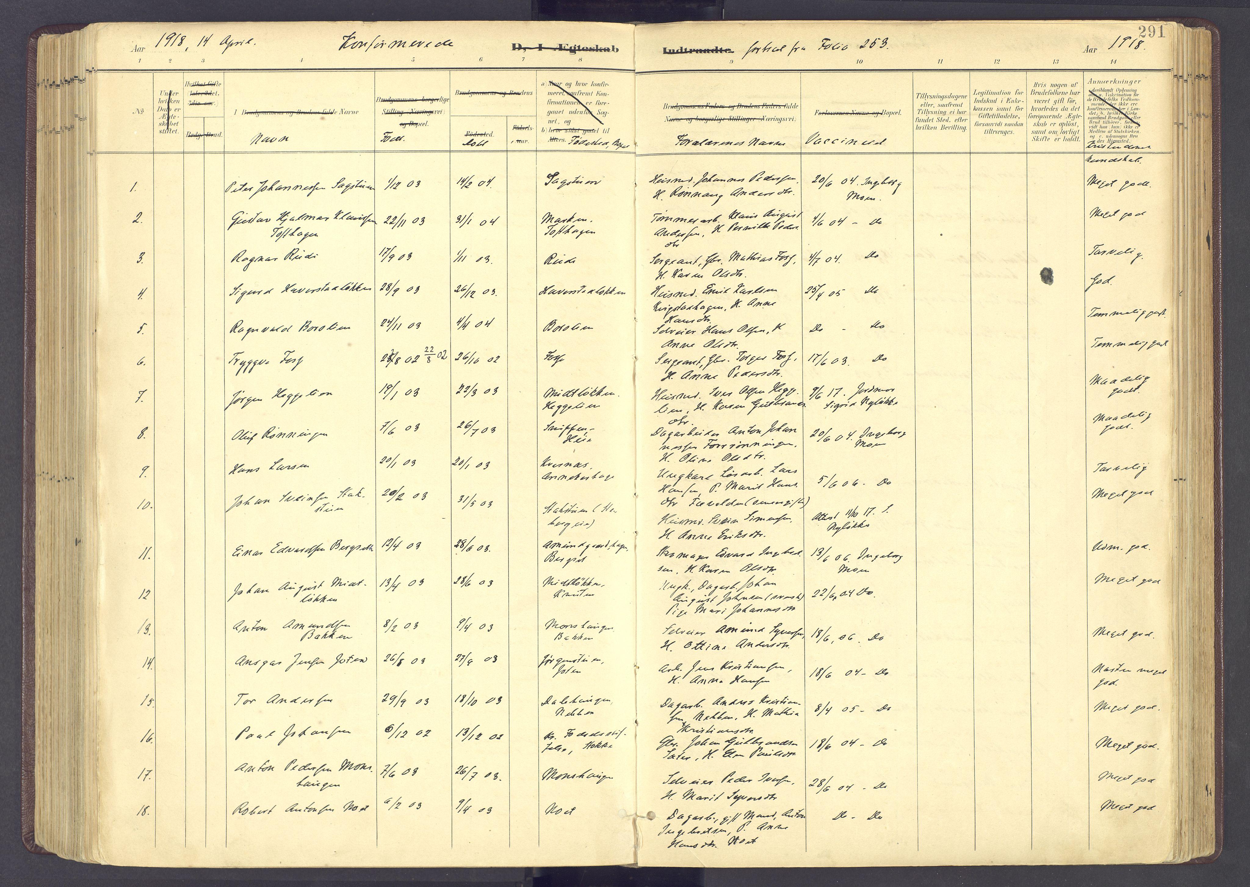 SAH, Sør-Fron prestekontor, H/Ha/Haa/L0004: Ministerialbok nr. 4, 1898-1919, s. 291