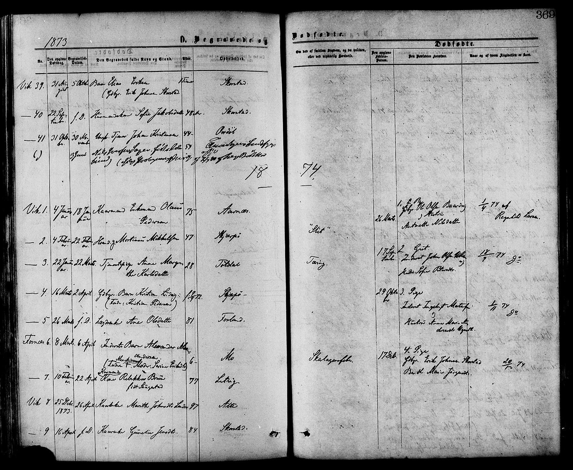 SAT, Ministerialprotokoller, klokkerbøker og fødselsregistre - Nord-Trøndelag, 773/L0616: Ministerialbok nr. 773A07, 1870-1887, s. 369