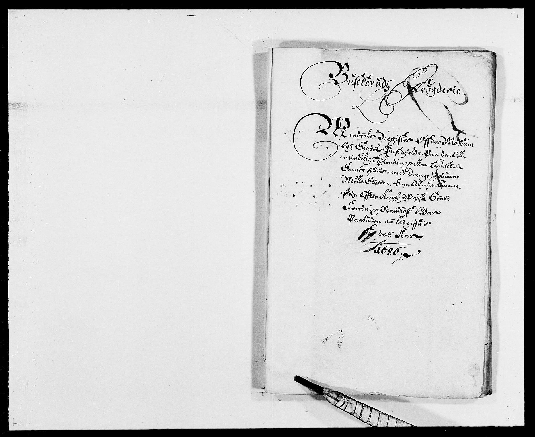 RA, Rentekammeret inntil 1814, Reviderte regnskaper, Fogderegnskap, R25/L1678: Fogderegnskap Buskerud, 1685-1686, s. 258