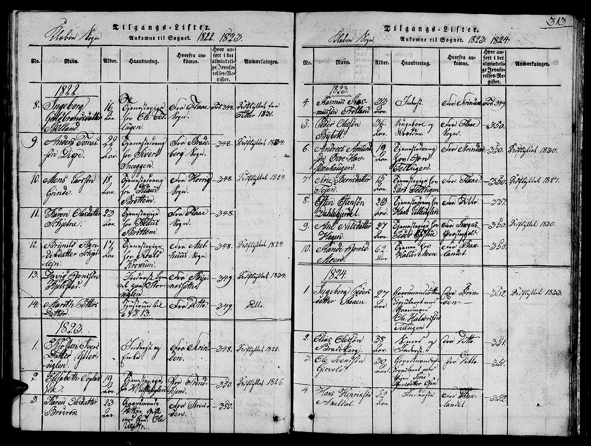 SAT, Ministerialprotokoller, klokkerbøker og fødselsregistre - Sør-Trøndelag, 618/L0450: Klokkerbok nr. 618C01, 1816-1865, s. 313
