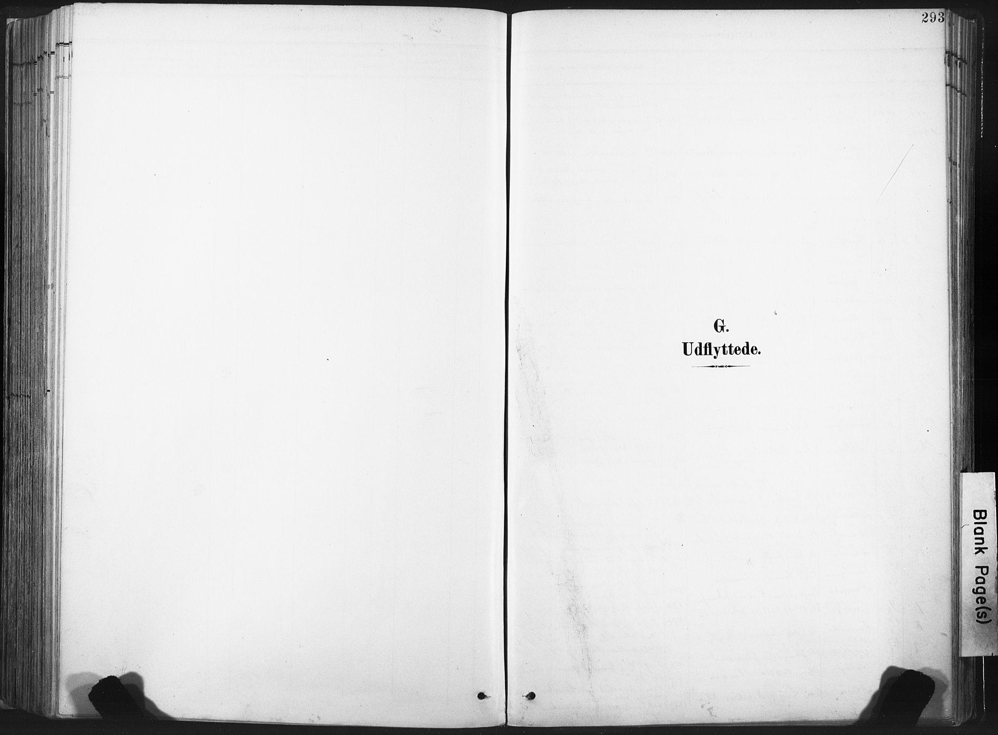 SAT, Ministerialprotokoller, klokkerbøker og fødselsregistre - Nord-Trøndelag, 717/L0162: Ministerialbok nr. 717A12, 1898-1923, s. 293