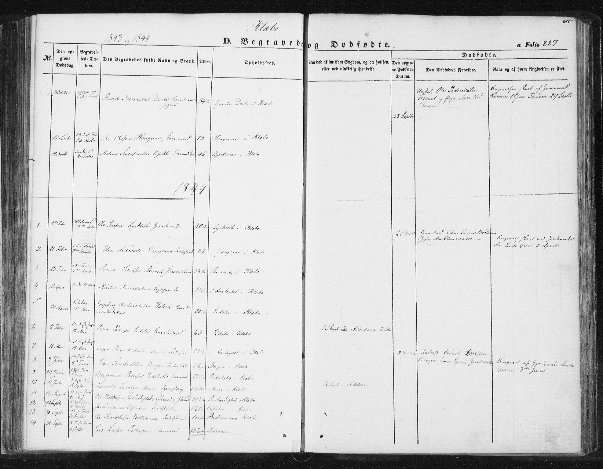 SAT, Ministerialprotokoller, klokkerbøker og fødselsregistre - Sør-Trøndelag, 618/L0441: Ministerialbok nr. 618A05, 1843-1862, s. 227