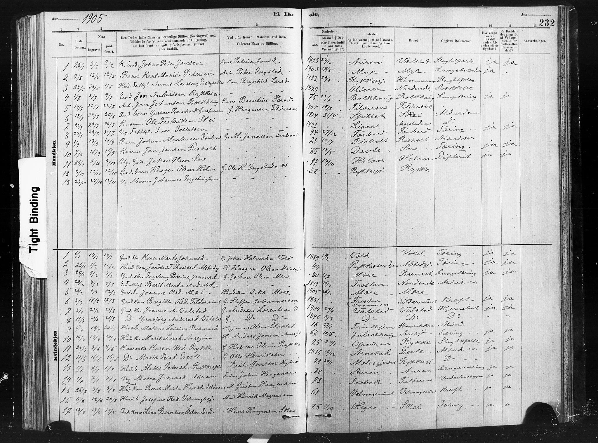 SAT, Ministerialprotokoller, klokkerbøker og fødselsregistre - Nord-Trøndelag, 712/L0103: Klokkerbok nr. 712C01, 1878-1917, s. 232