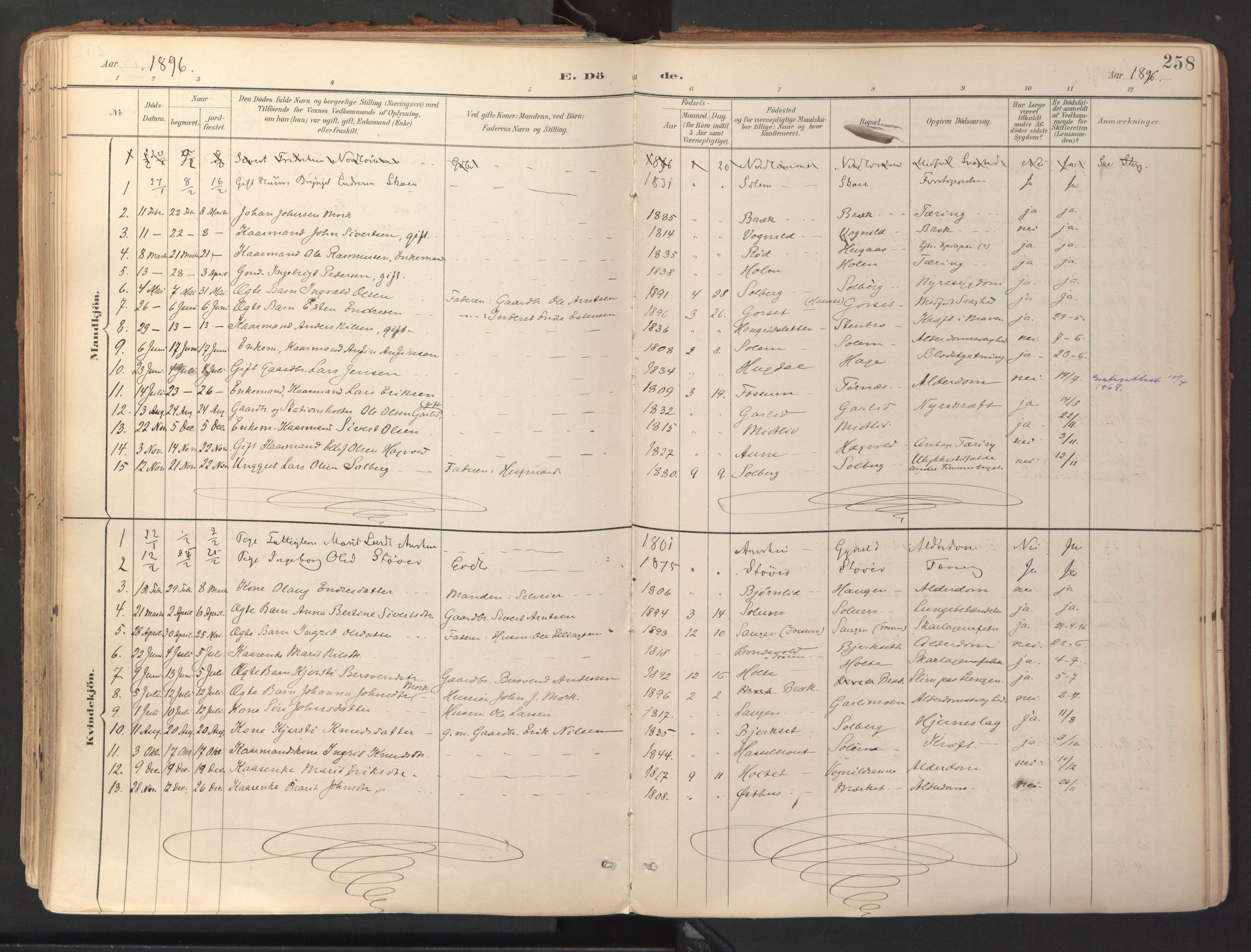 SAT, Ministerialprotokoller, klokkerbøker og fødselsregistre - Sør-Trøndelag, 689/L1041: Ministerialbok nr. 689A06, 1891-1923, s. 258
