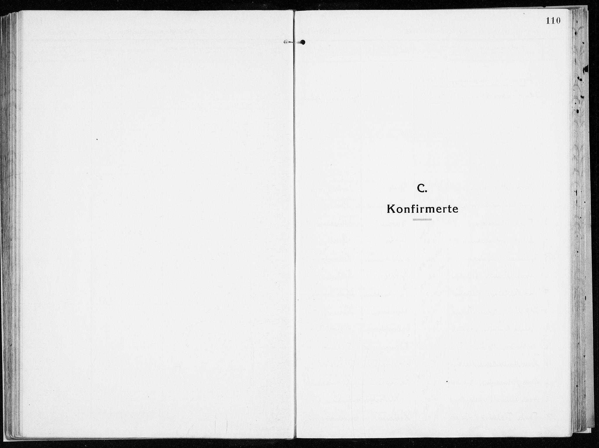 SAH, Vardal prestekontor, H/Ha/Haa/L0017: Ministerialbok nr. 17, 1915-1929, s. 110