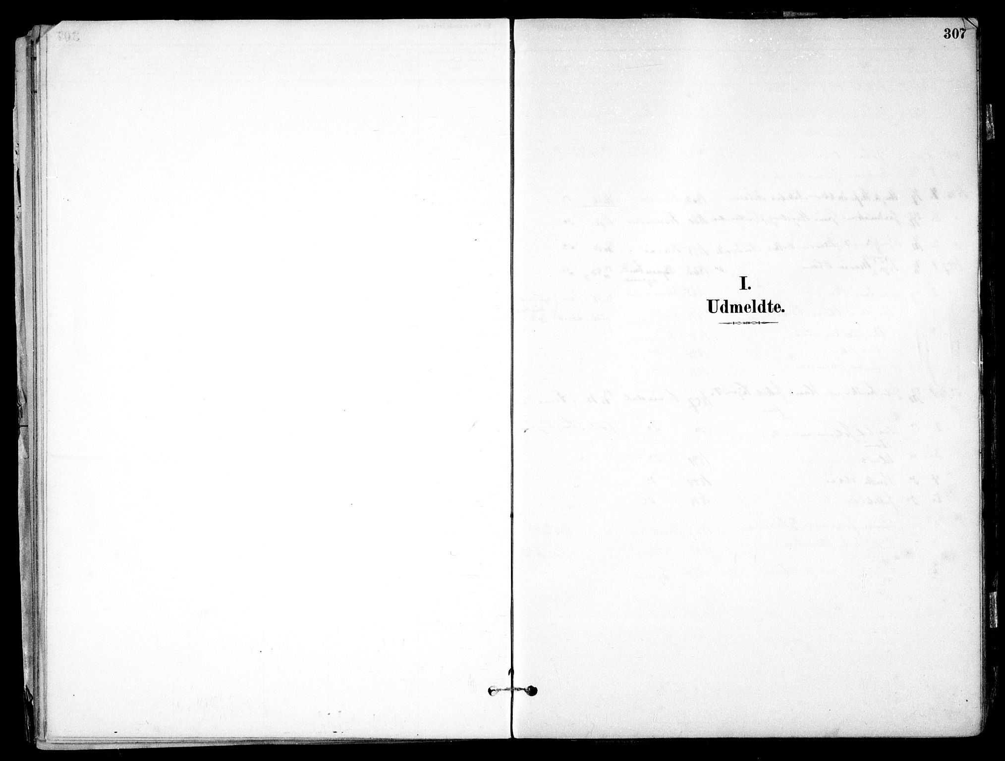 SAO, Nes prestekontor Kirkebøker, F/Fb/L0002: Ministerialbok nr. II 2, 1883-1918, s. 307