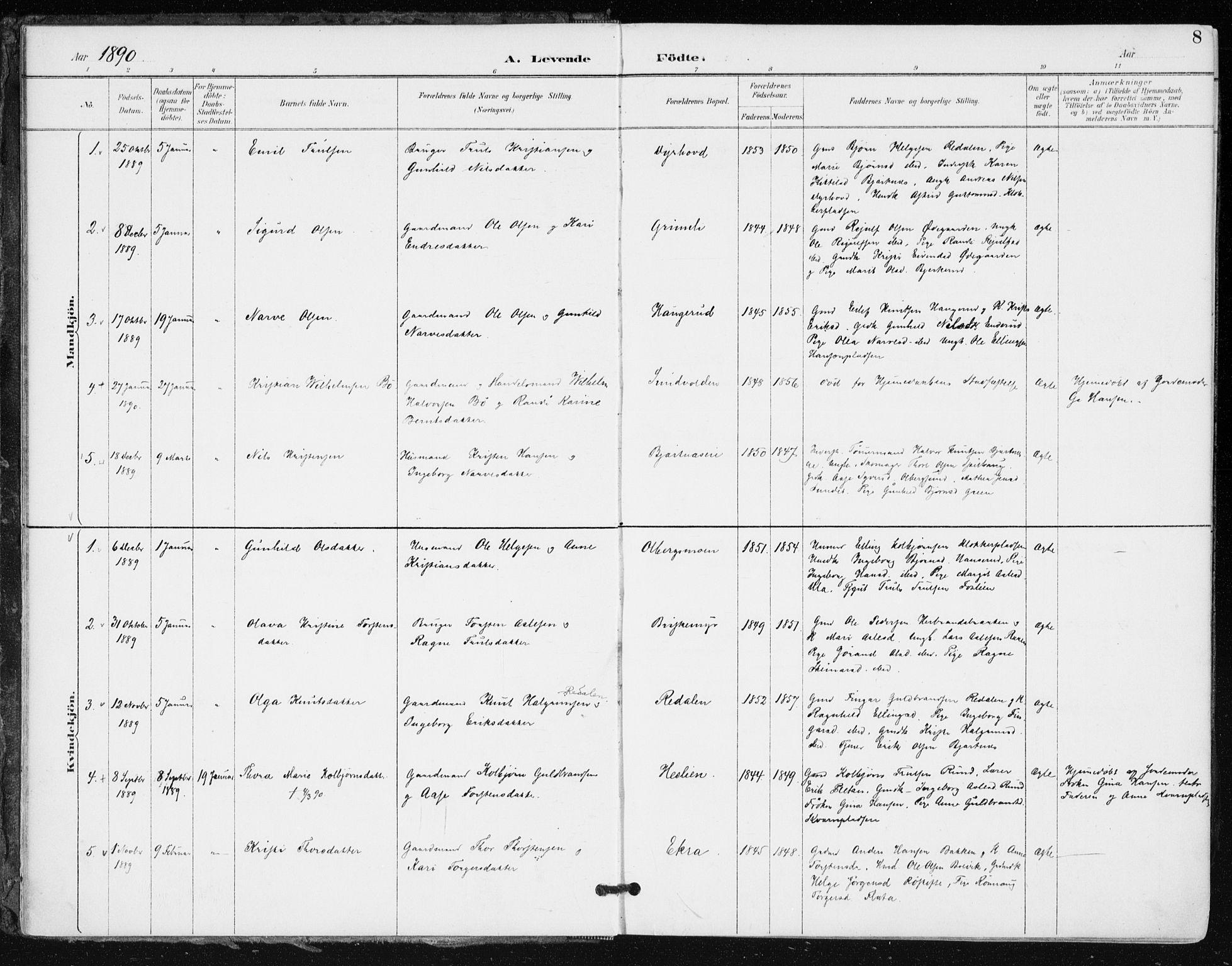 SAKO, Krødsherad kirkebøker, F/Fa/L0006: Ministerialbok nr. 6, 1889-1899, s. 8