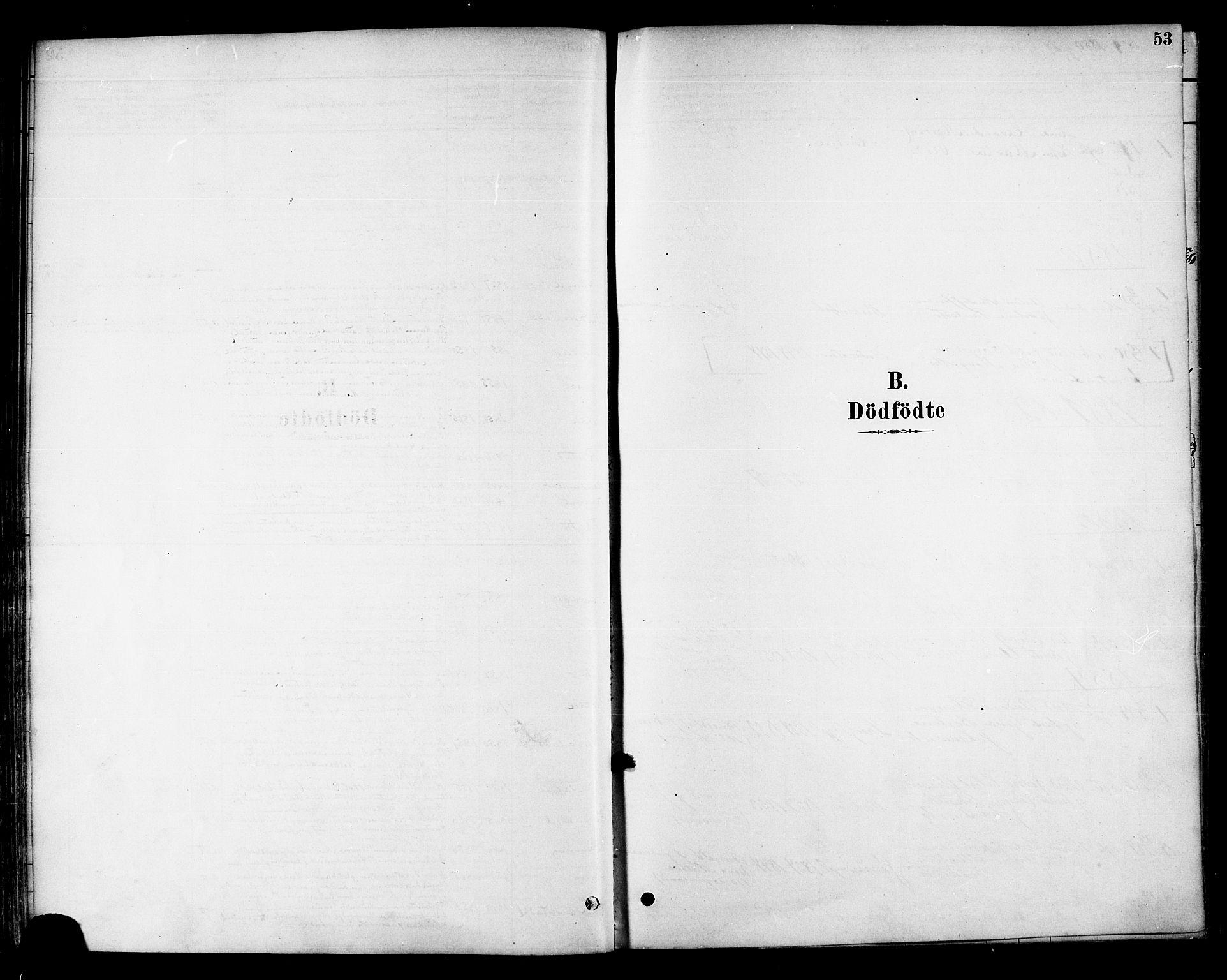 SAT, Ministerialprotokoller, klokkerbøker og fødselsregistre - Nord-Trøndelag, 741/L0395: Ministerialbok nr. 741A09, 1878-1888, s. 53