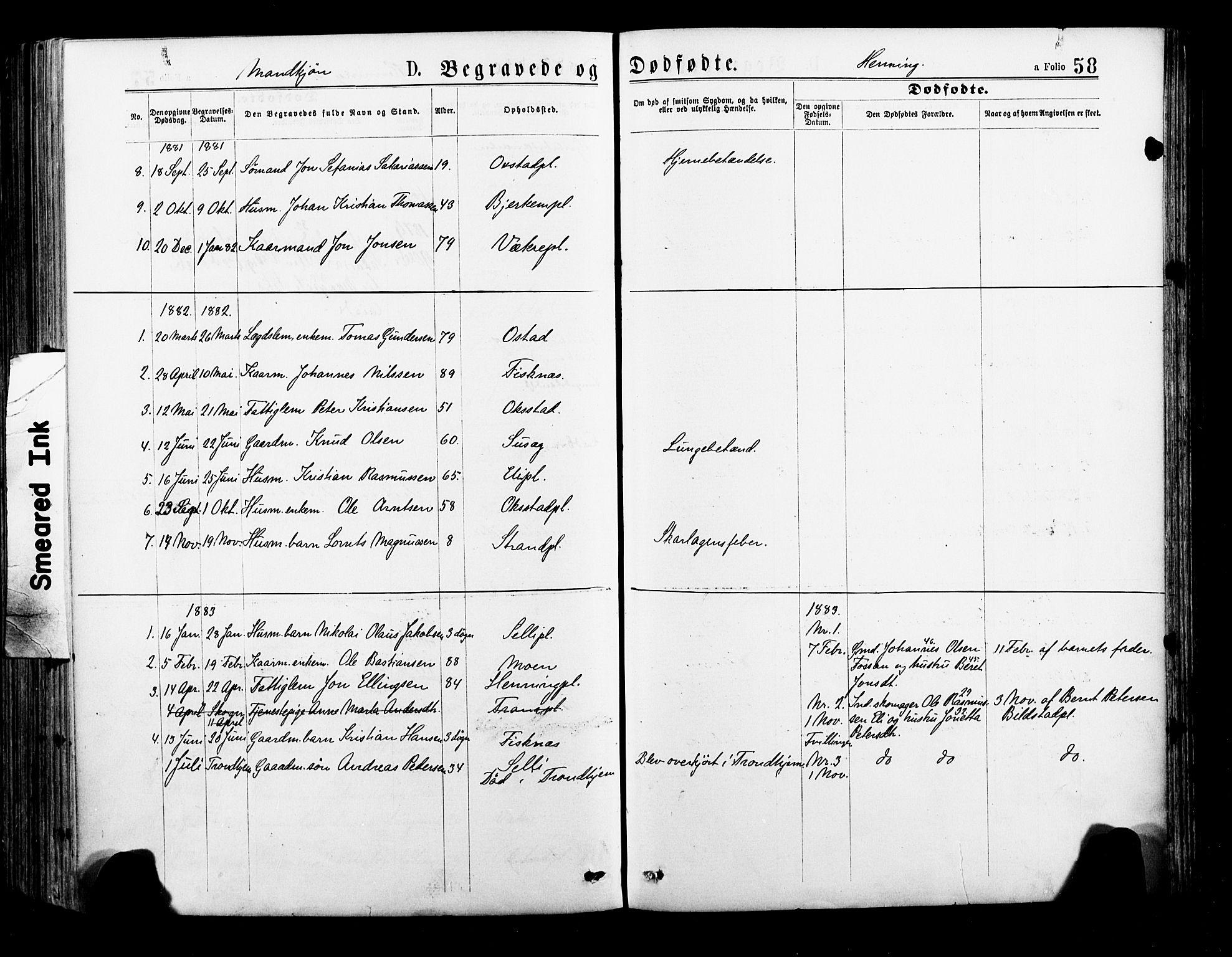 SAT, Ministerialprotokoller, klokkerbøker og fødselsregistre - Nord-Trøndelag, 735/L0348: Ministerialbok nr. 735A09 /3, 1873-1883, s. 58