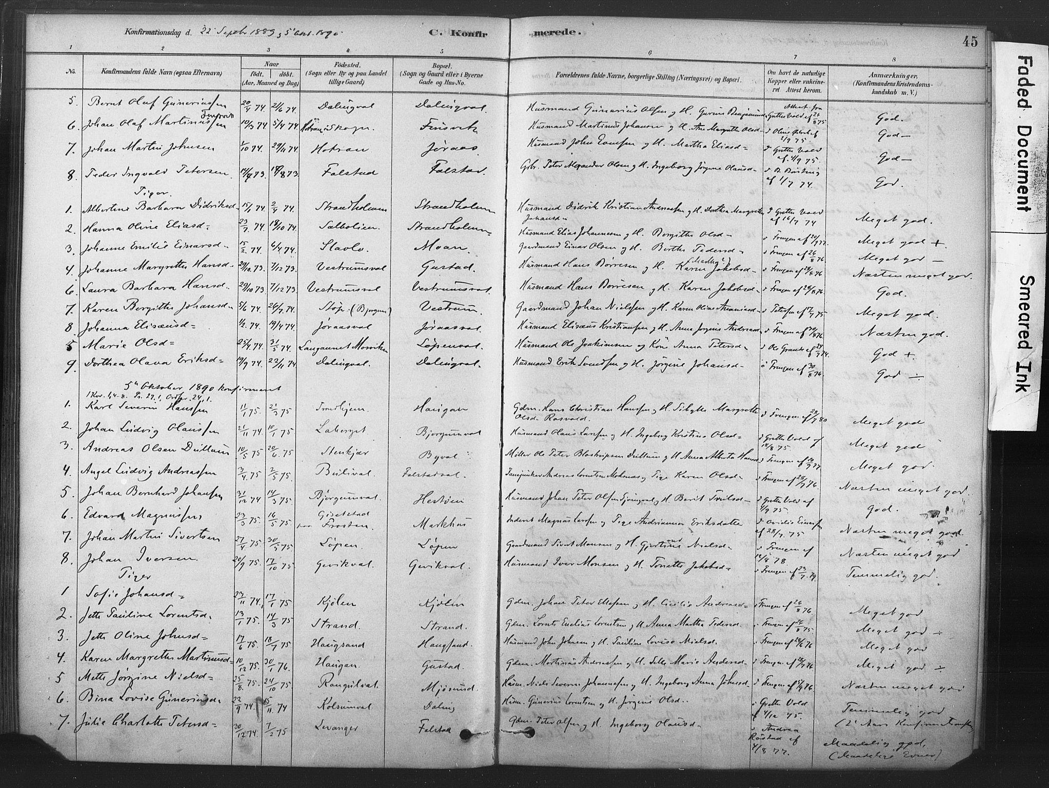 SAT, Ministerialprotokoller, klokkerbøker og fødselsregistre - Nord-Trøndelag, 719/L0178: Ministerialbok nr. 719A01, 1878-1900, s. 45