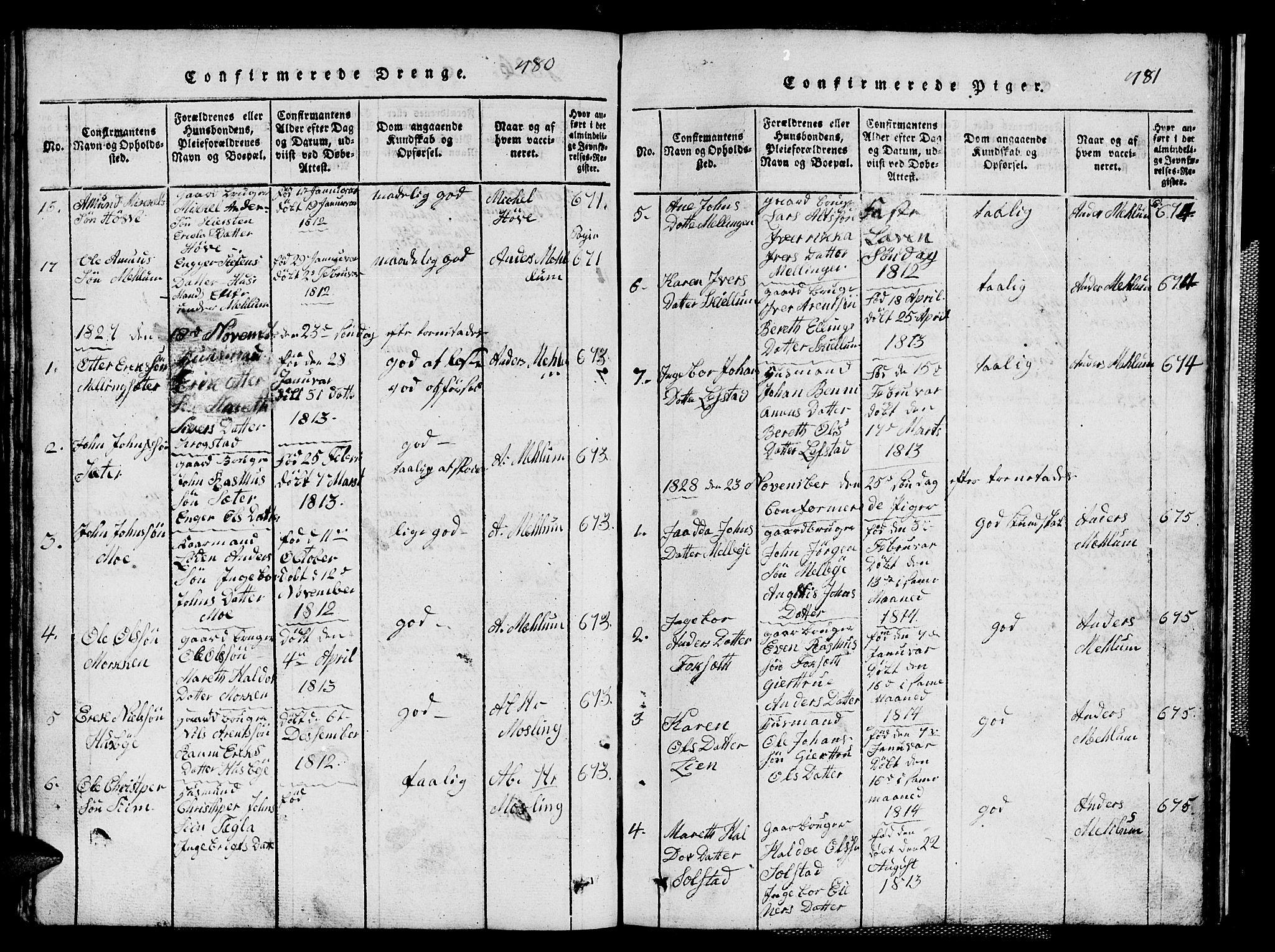 SAT, Ministerialprotokoller, klokkerbøker og fødselsregistre - Sør-Trøndelag, 667/L0796: Klokkerbok nr. 667C01, 1817-1836, s. 480-481